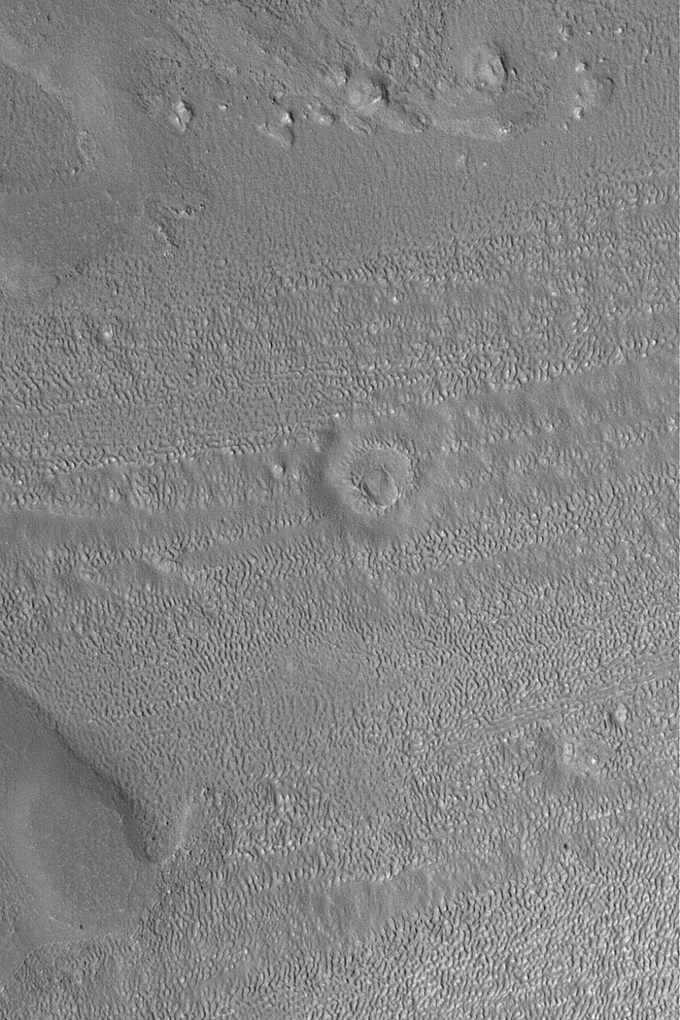 NASA's Mars Global Surveyor shows the degraded remnants of an old meteor impact crater located in the fretted terrains north of Arabia Terra on Mars.