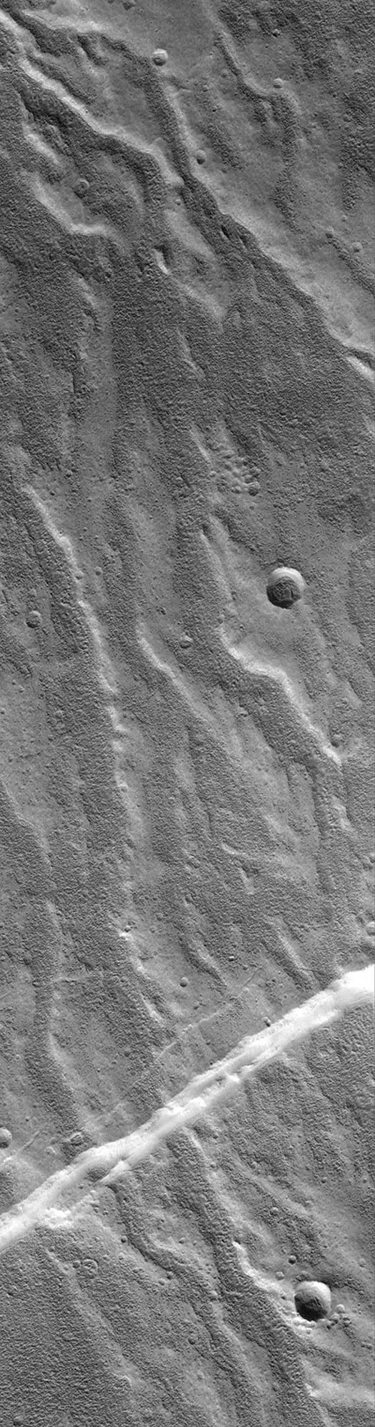 NASA's Mars Global Surveyor shows the northwest flanks of the broad, northern Tharsis volcano, Alba Patera on Mars. A plethora of what appeared to be branching valley networks running down the volcano slopes.