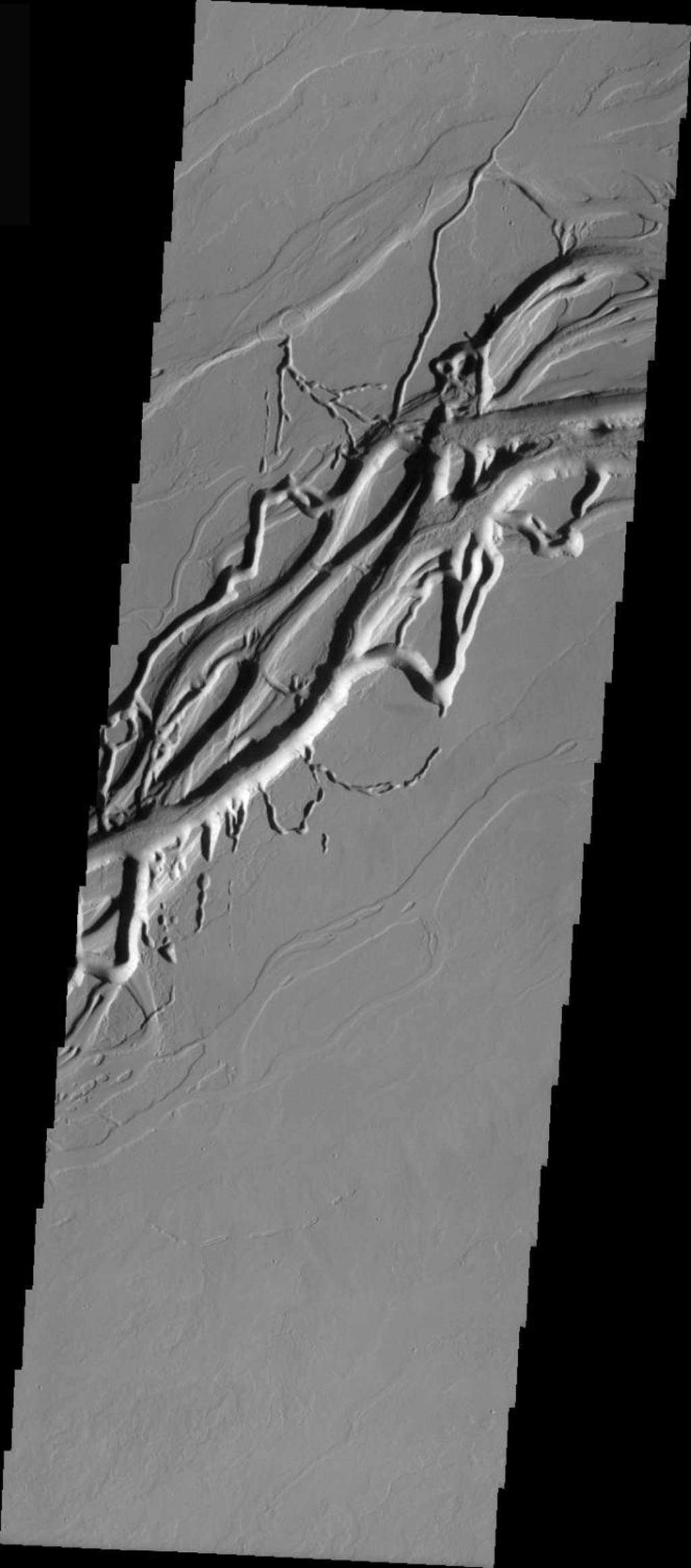 This image released on Dec 2, 2004 from NASA's 2001 Mars Odyssey shows Olympica Fossae, located closer to Alba Patera on Mars. A deep main channel and nearby collapse channels are seen.