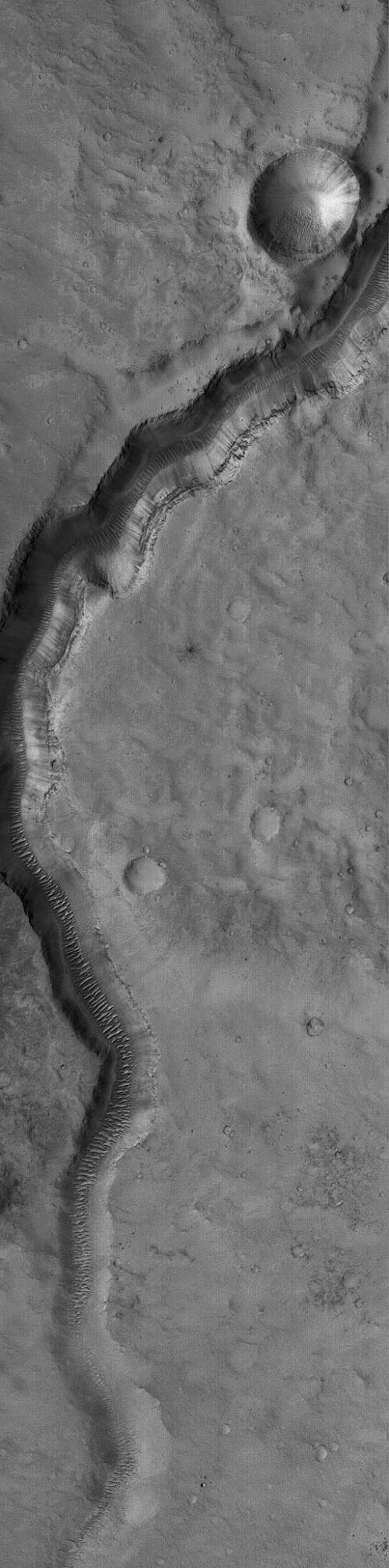 NASA's Mars Global Surveyor shows an ancient valley in far northwestern Arabia Terra, near the Cydonia region on Mars. Large, windblown ripples occur on the valley floor.
