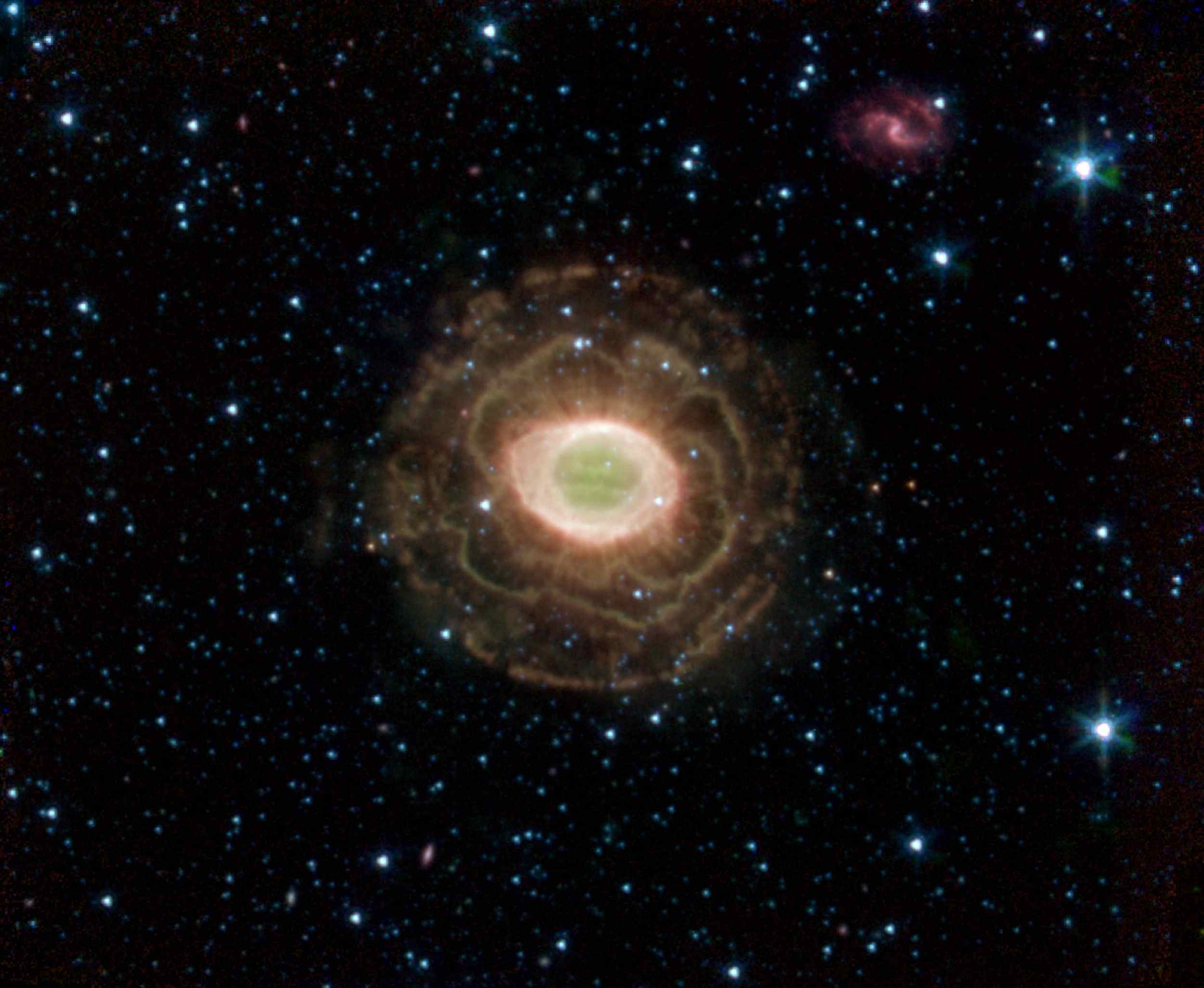 NASA's Spitzer Space Telescope finds a delicate flower in the Ring Nebula, as shown in this image. The outer shell of this planetary nebula looks surprisingly similar to the delicate petals of a camellia blossom.