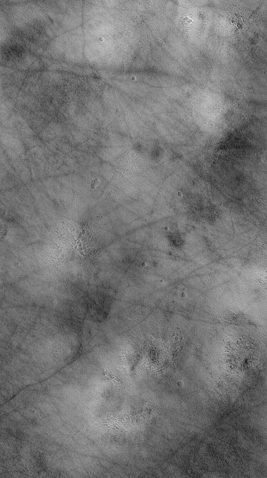NASA's Mars Global Surveyor shows a typical view of the vast martian northern plains. The dark, filamentary streaks were most likely formed by passing dust devils.