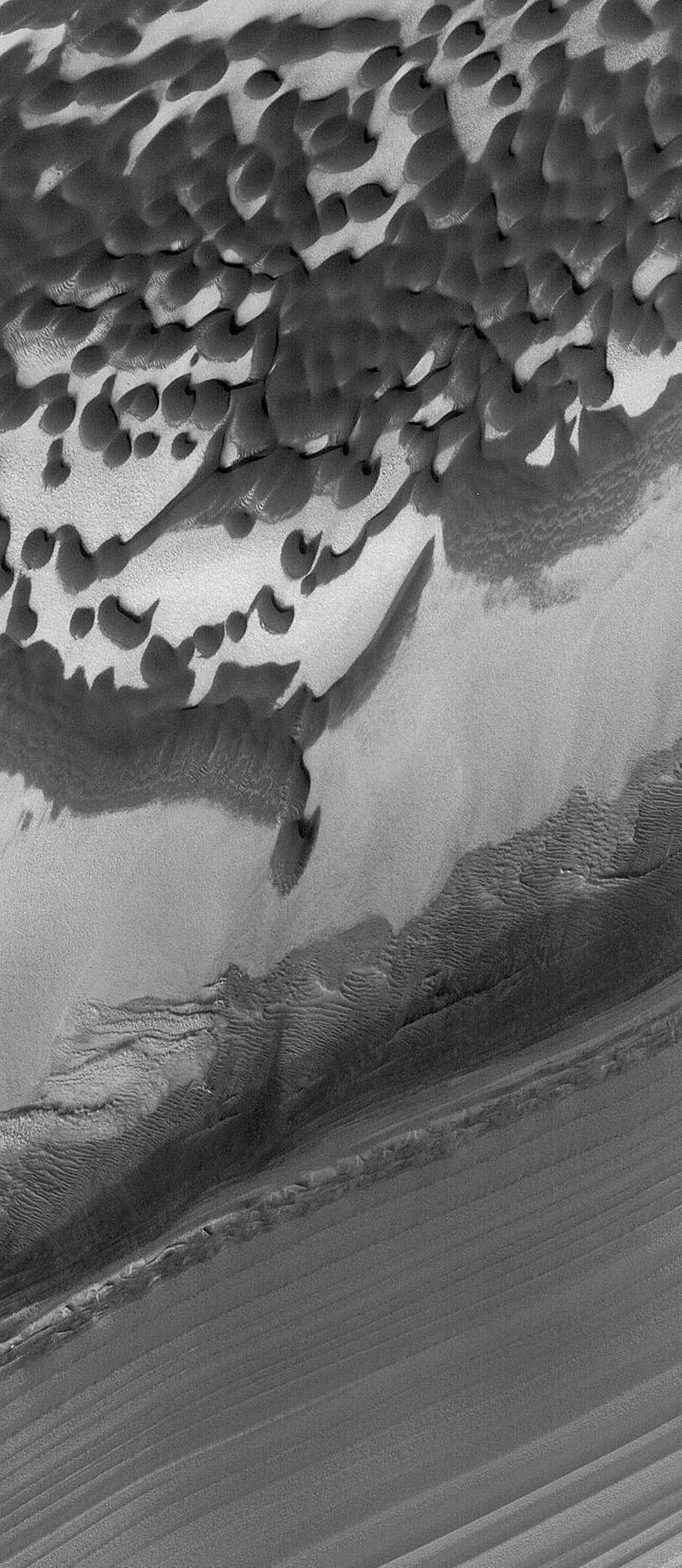 This Mars Global Surveyor (MGS) Mars Orbiter Camera (MOC) image shows layers and dunes in Chasma Boreale, a large depression in the north polar region.