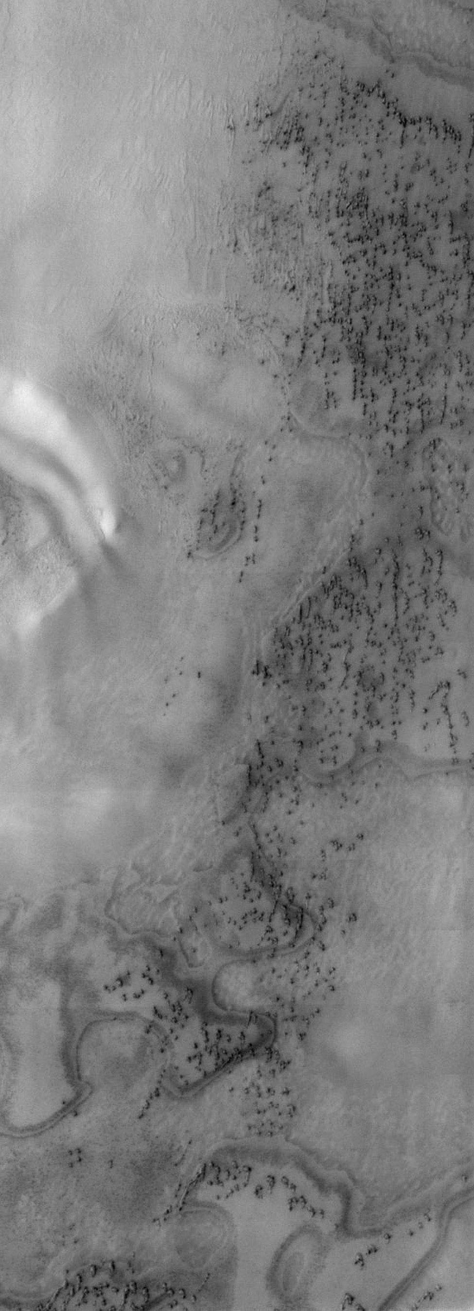This image taken by NASA's Mars Odyssey shows the north polar sand sea on Mars, and at isolated dune fields at lower latitudes.