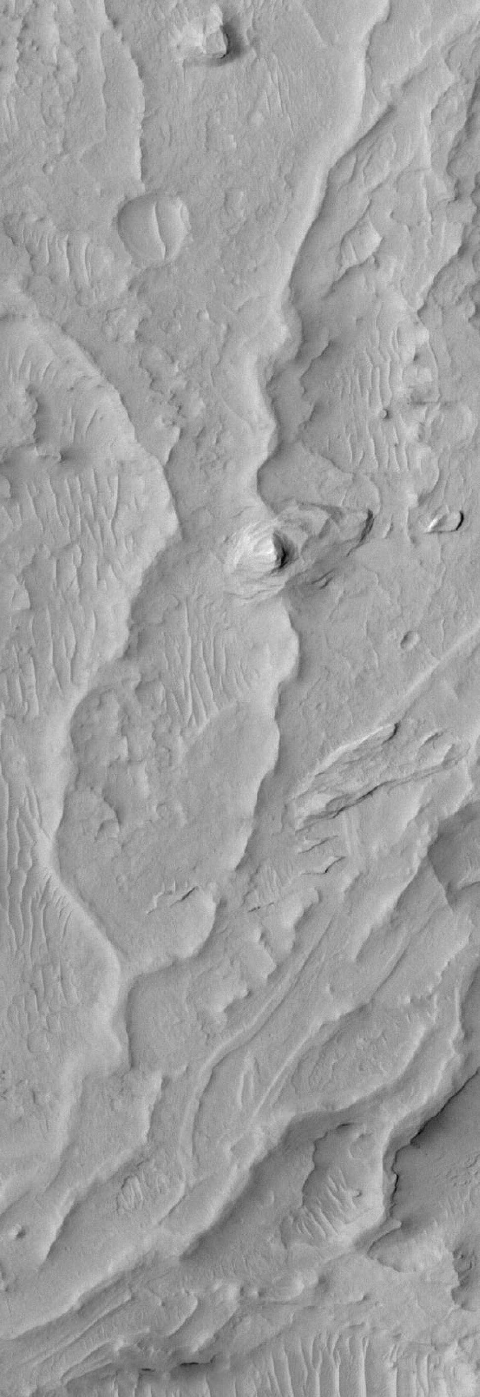 NASA's Mars Global Surveyor shows sinuous ridges and other landforms exposed by erosion in the Aeolis region of Mars.