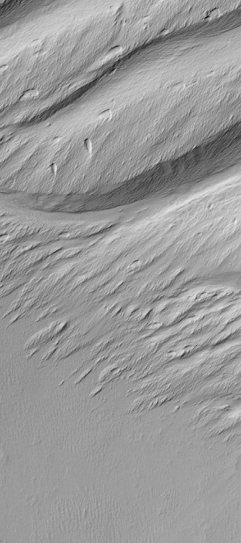 NASA's Mars Global Surveyor shows a contact between a dust-covered plain and a dust-mantled, textured upland in the Memnonia Sulci region of Mars.