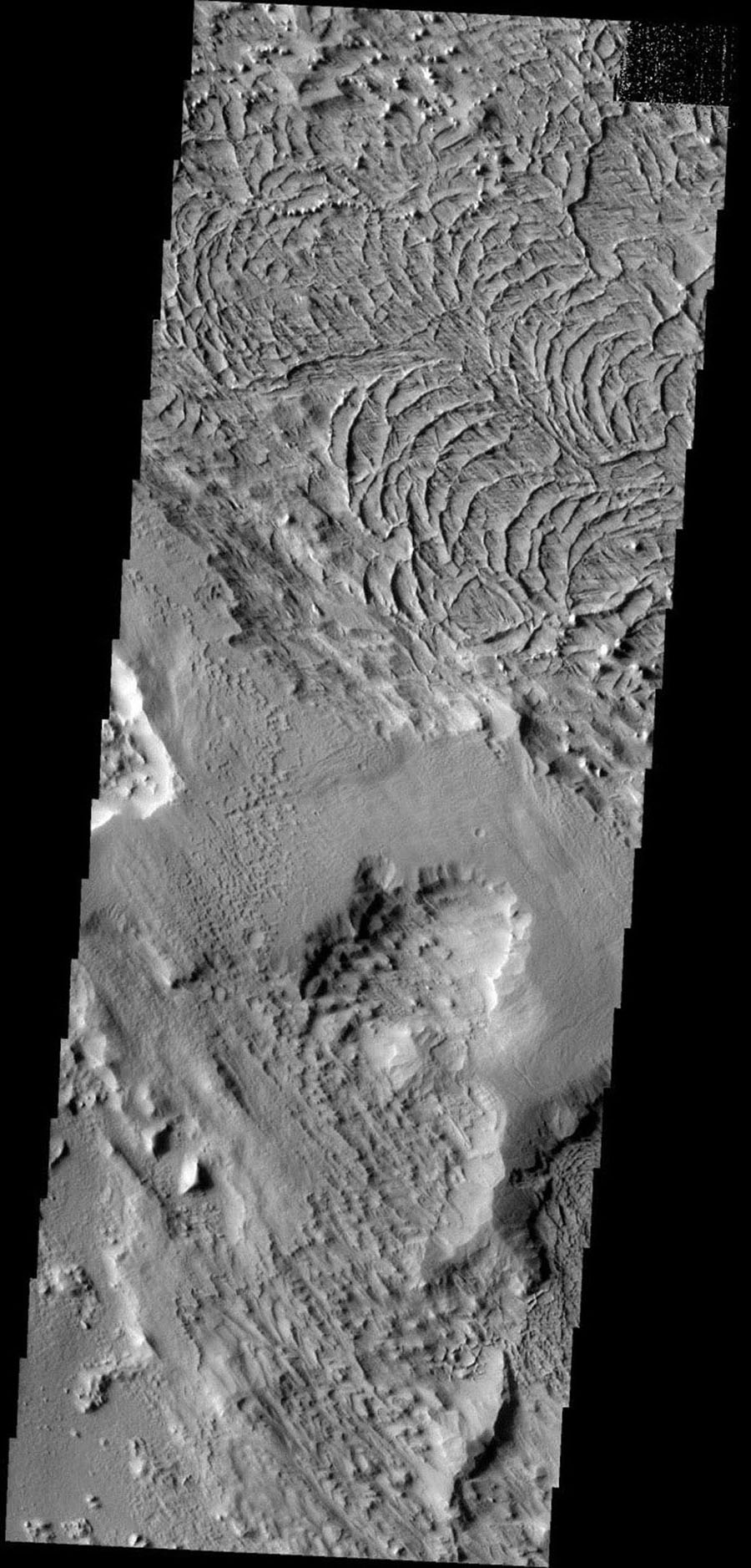 These arcuate ridges are appearing as wind erosion removes the less resistant surface materials. This terrain is located on the northern end of Gordii Dorsum on Mars. This image is from NASA's 2001 Mars Odyssey.
