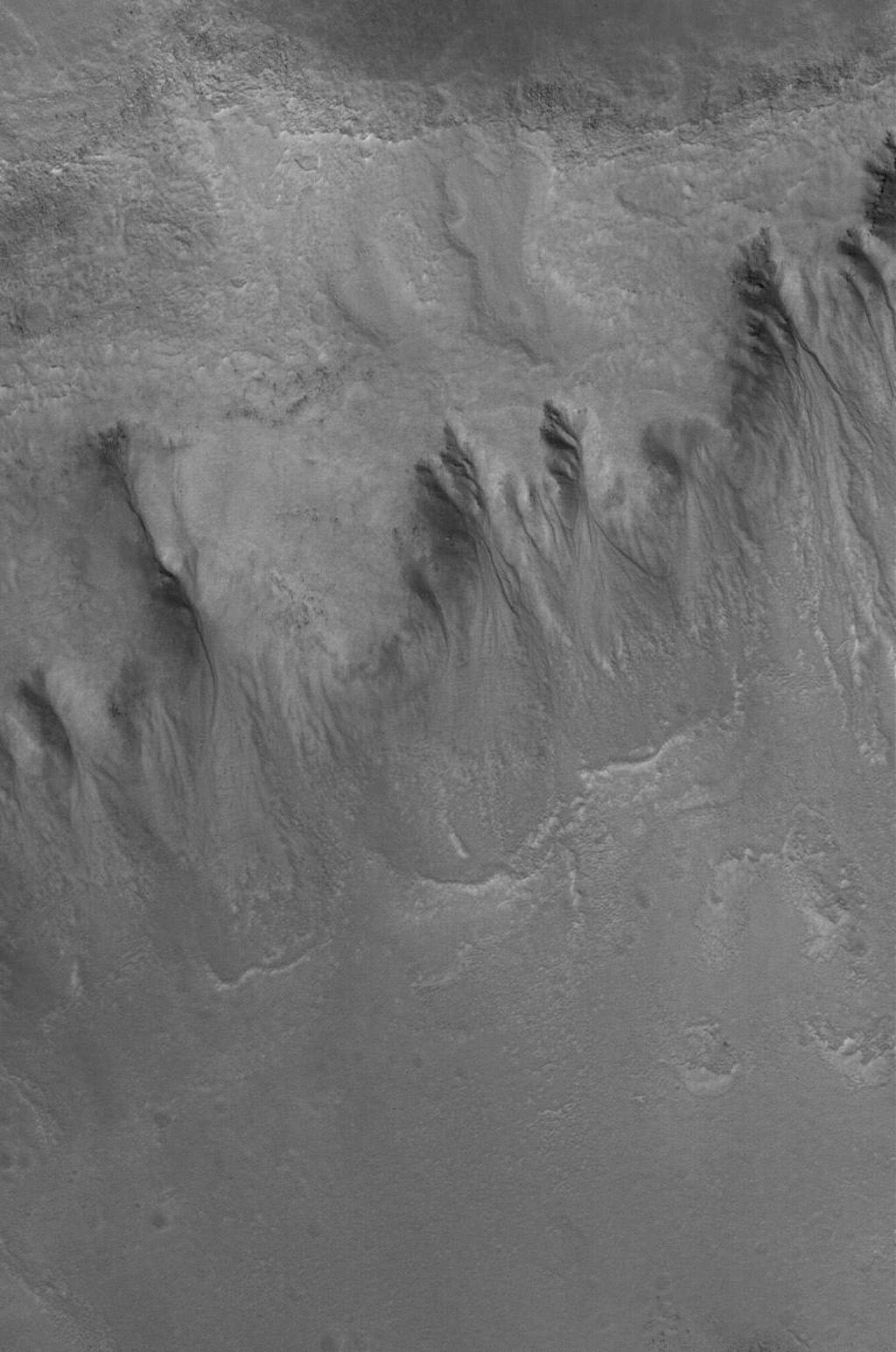 This image from NASA's Mars Global Surveyor shows a group of gullies formed on the equator-facing wall of a north mid-latitude crater. Gullies such as these might have formed from the erosive forces of liquid water.