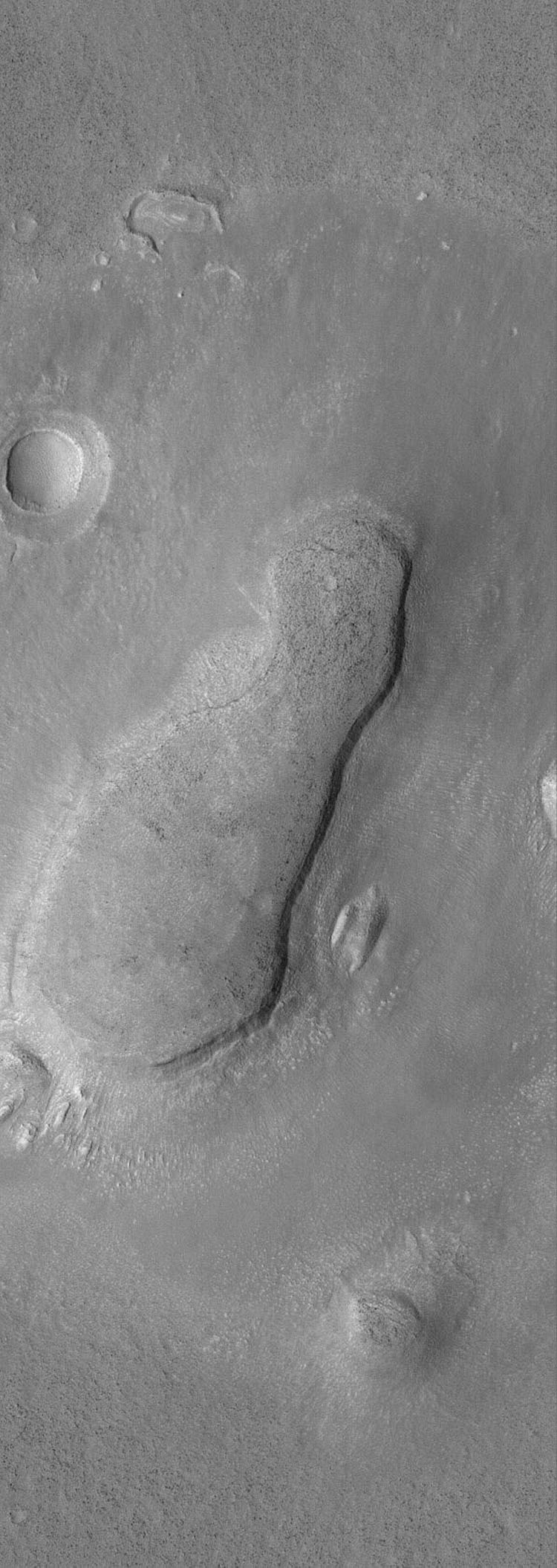 This image from NASA's Mars Global Surveyor shows a mesa and an impact grater just east of Phlegra Montes. The mesa is the eroded remnant of a once more extensive terrain. An apron of material surrounds the mesa.