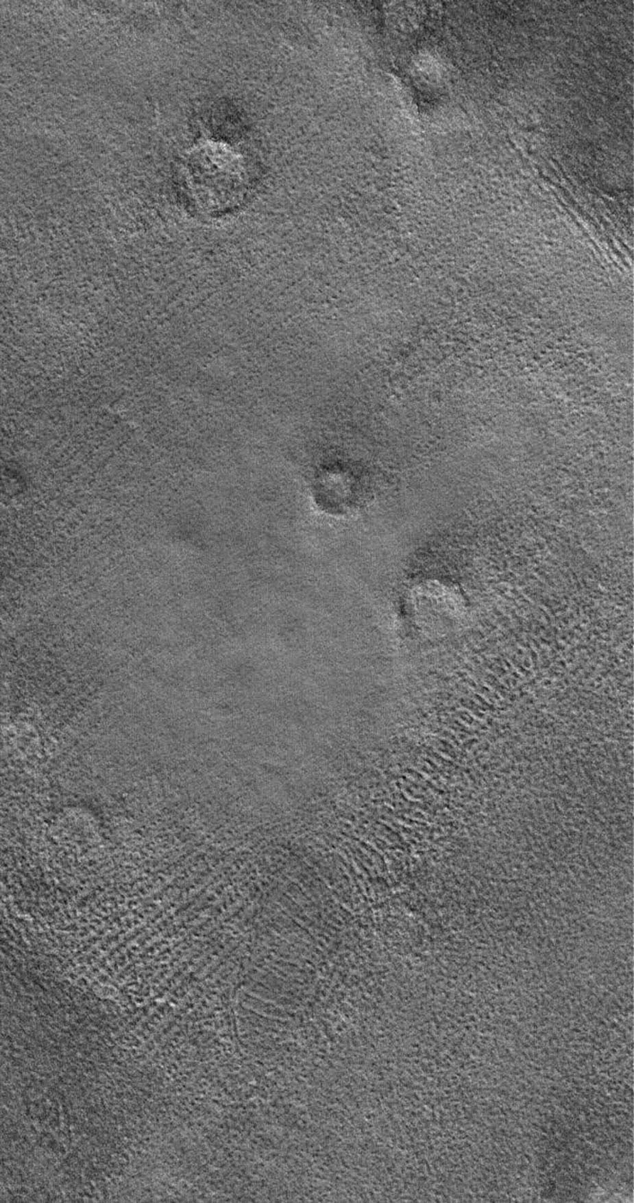 This image from NASA's Mars Global Surveyor shows the patterned ground of the cold, martian northern plains. The circular features are the sites of buried impact craters.