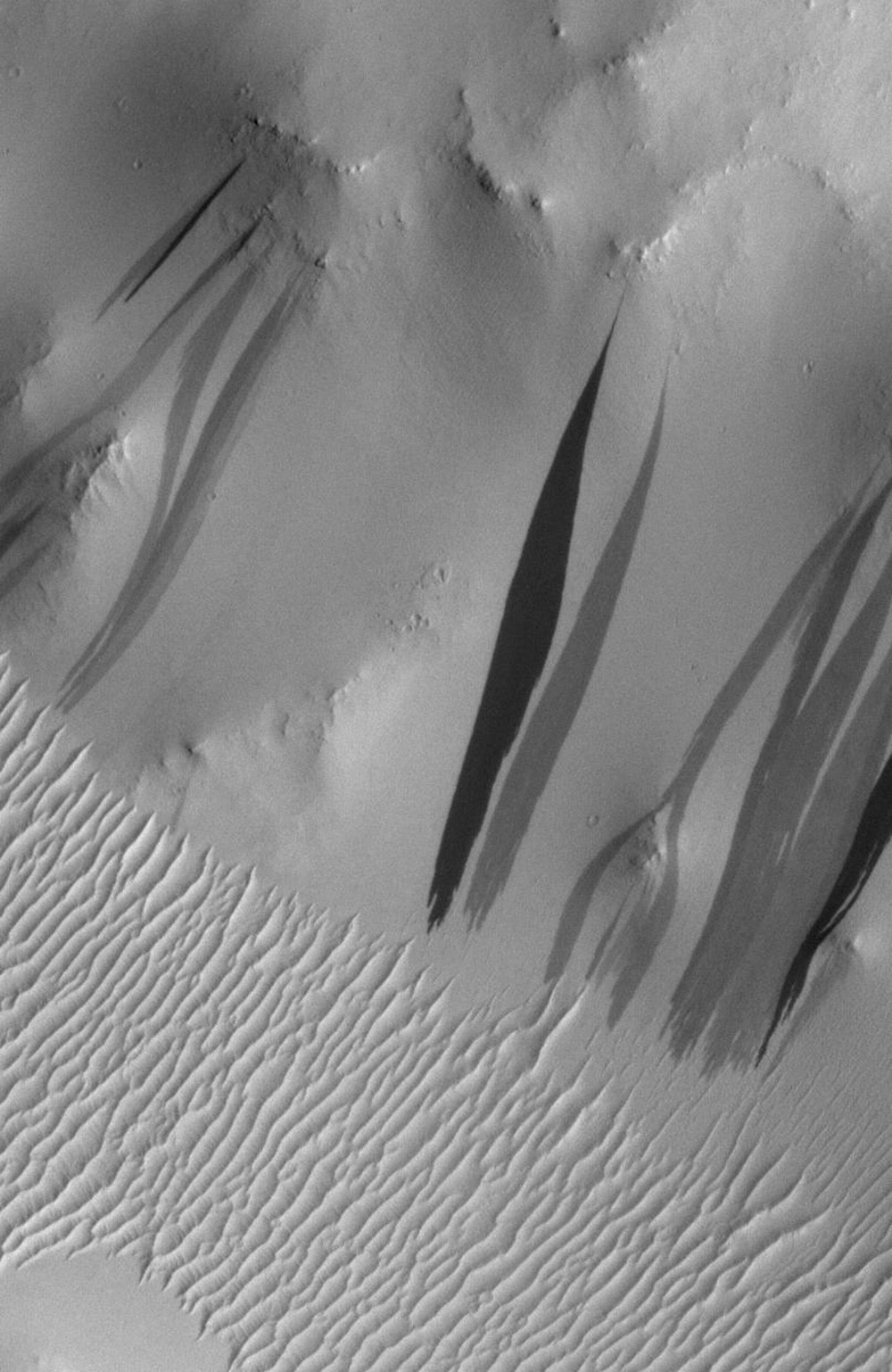 Light-toned deposits forming in two gully sites in Terra Sirenum on Mars during NASA's Mars Global Surveyor mission in the 1999-2005 period are considered to be a result of sediment transport by a fluid with the physical properties of liquid water.