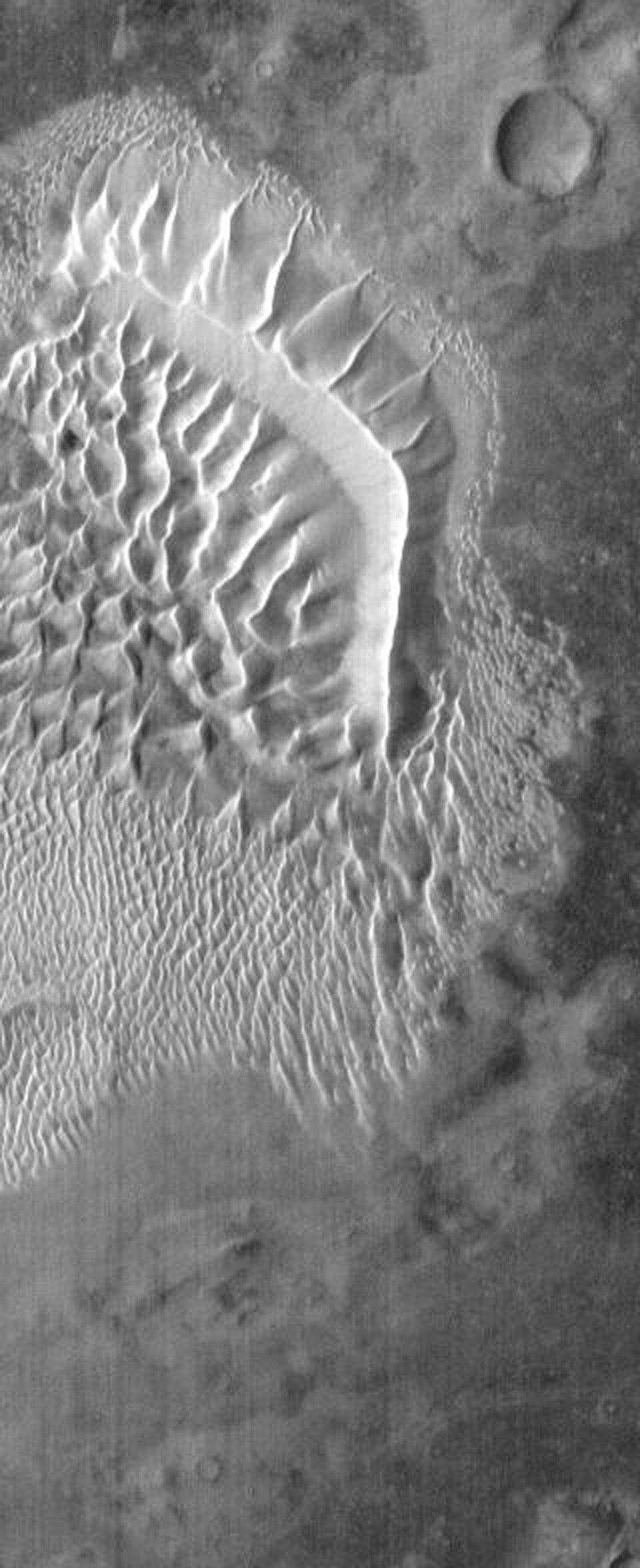 This image from NASA's Mars Odyssey spacecraft shows the main dune field on the floor of Russell Crater on Mars. The dunes are bright in this daytime image because they are warm. The sand material is dark.