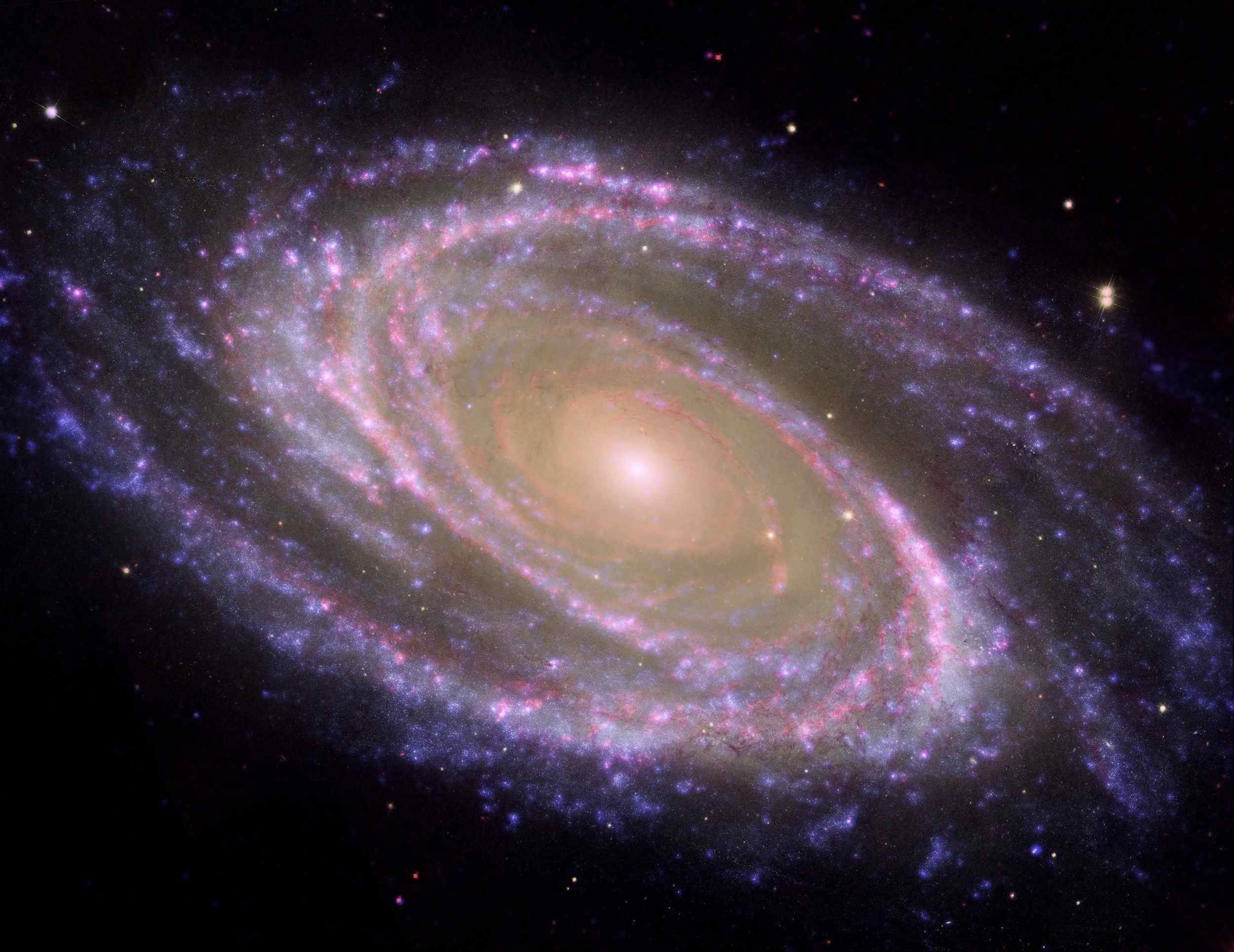 The perfectly picturesque spiral galaxy known as Messier 81, or M81, looks sharp in this new composite from NASA's Spitzer and Hubble space telescopes and NASA's Galaxy Evolution Explorer.