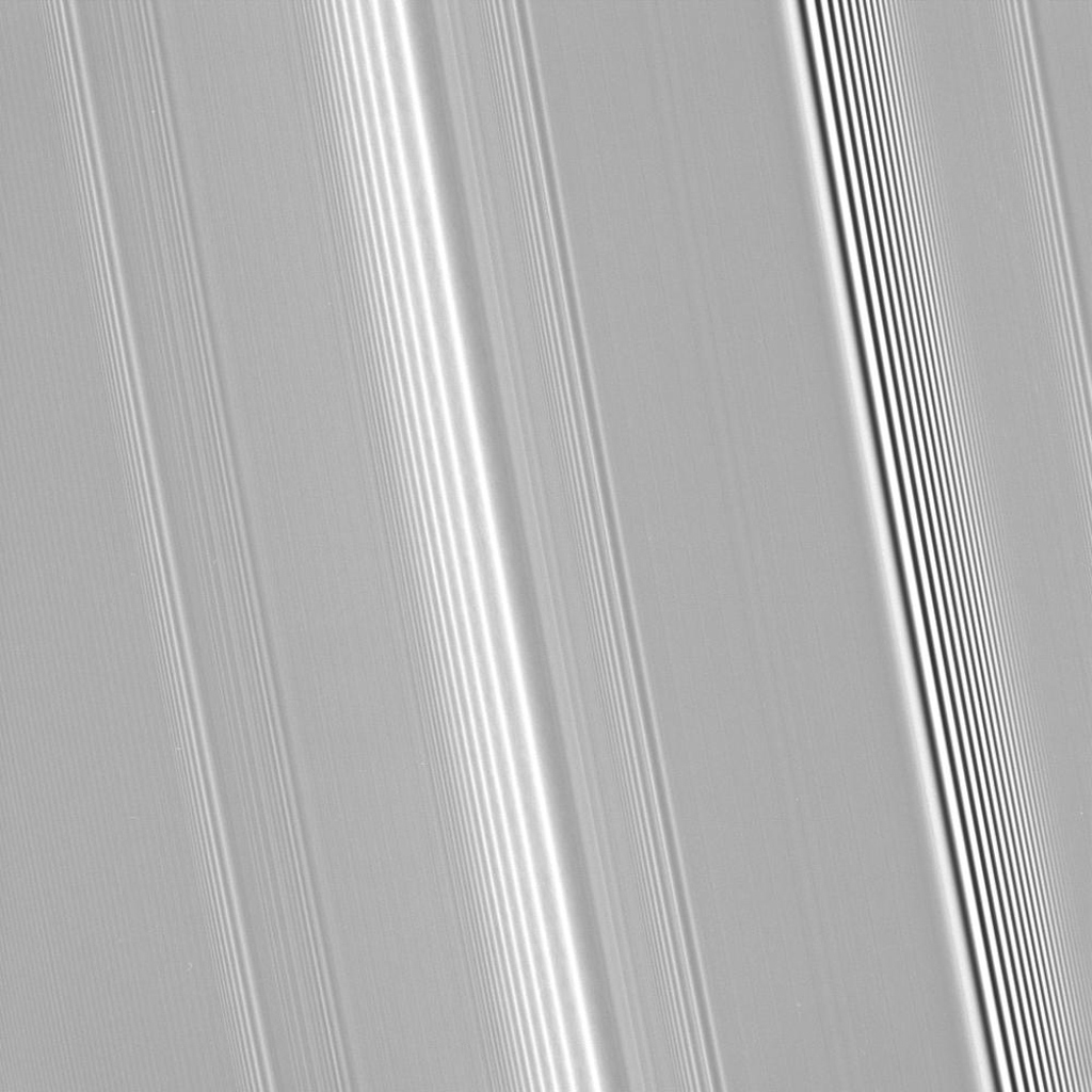 Many features in Saturn's rings are thought to be induced by the gravity of the planet's moons in this image captured by NASA's Cassini spacecraft on Sept. 25, 2008.