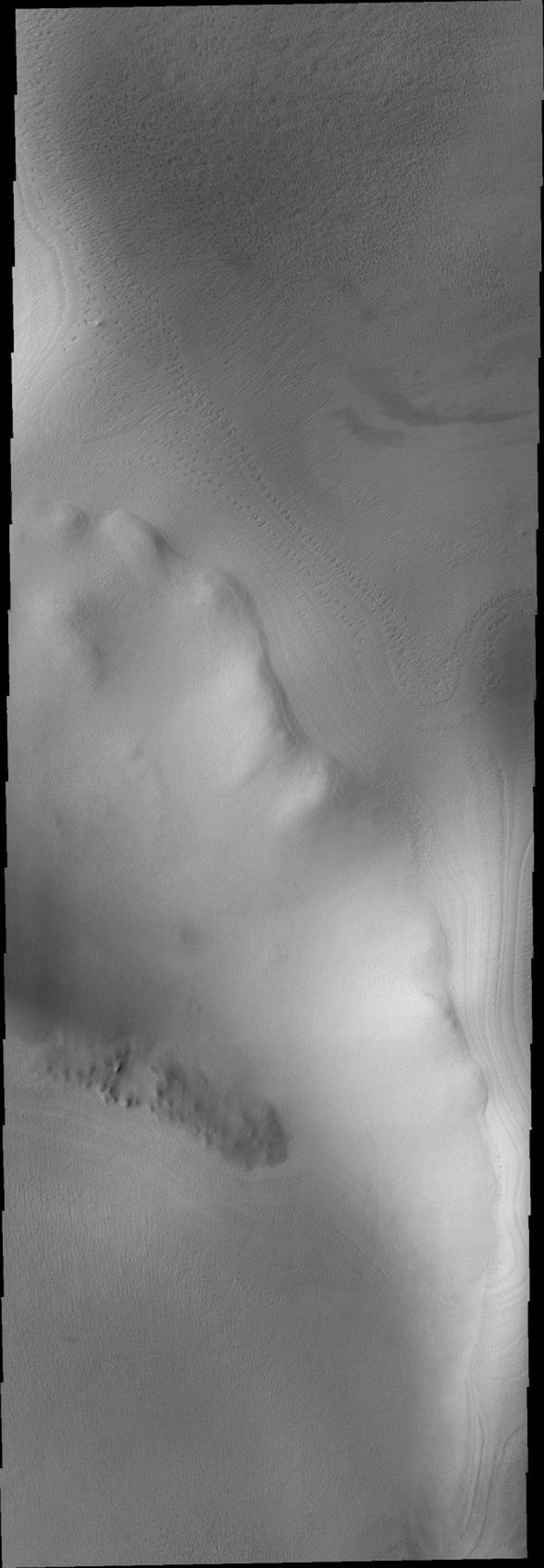 This image from NASA's Mars Odyssey shows Mars' unusual polar texture resembling bird tracks in snow that developed during summer heating.