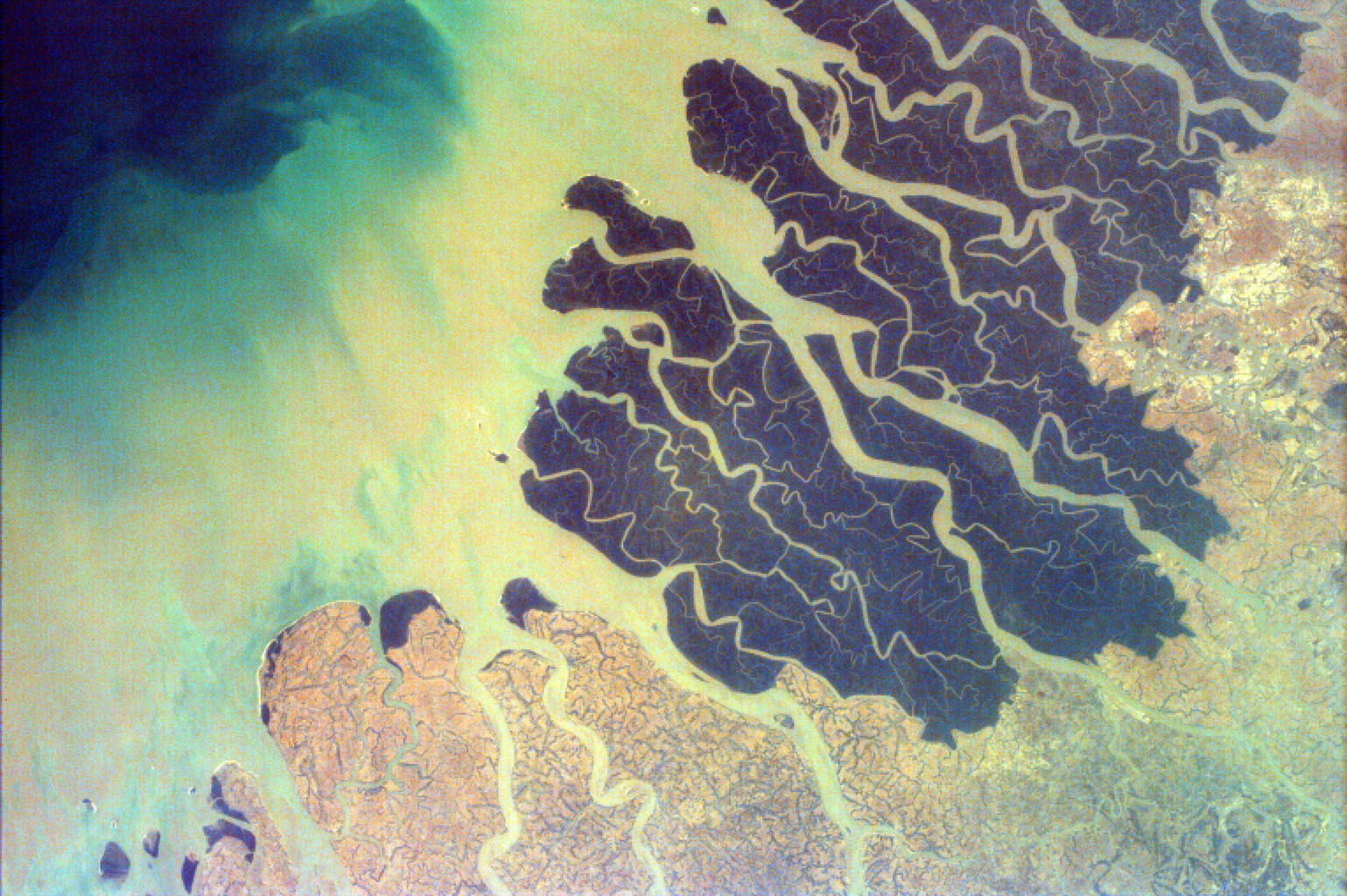 Parts of the vast Ganges delta, in fact the world's largest, lie in both Bangladesh and the State of West Bengal, India as seen by NASA's EarthKAM.