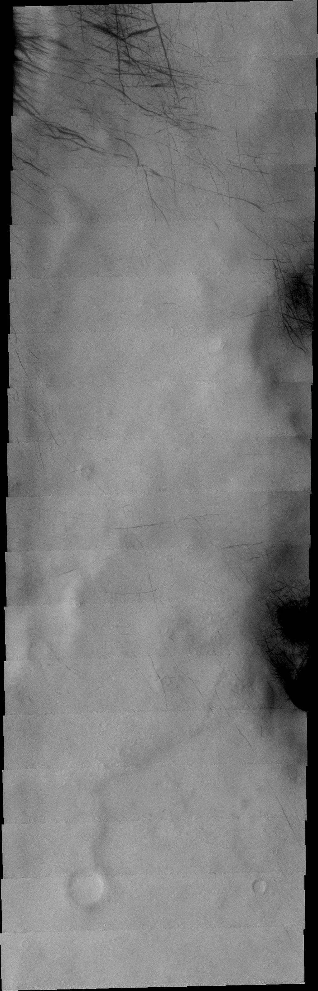The dust devil tracks in this VIS image are located in Terra Cimmeria.