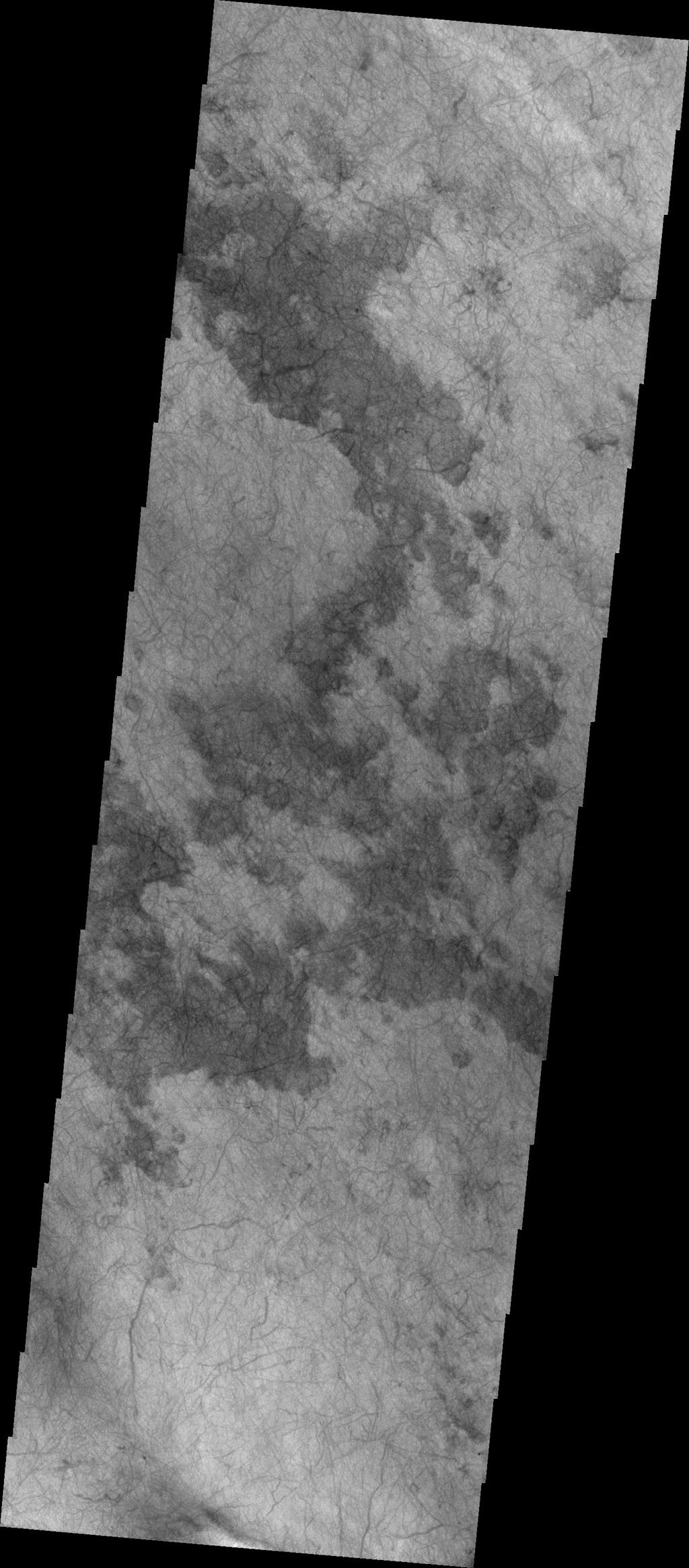 The dust devil tracks in this image are located in Terra Cimmeria.