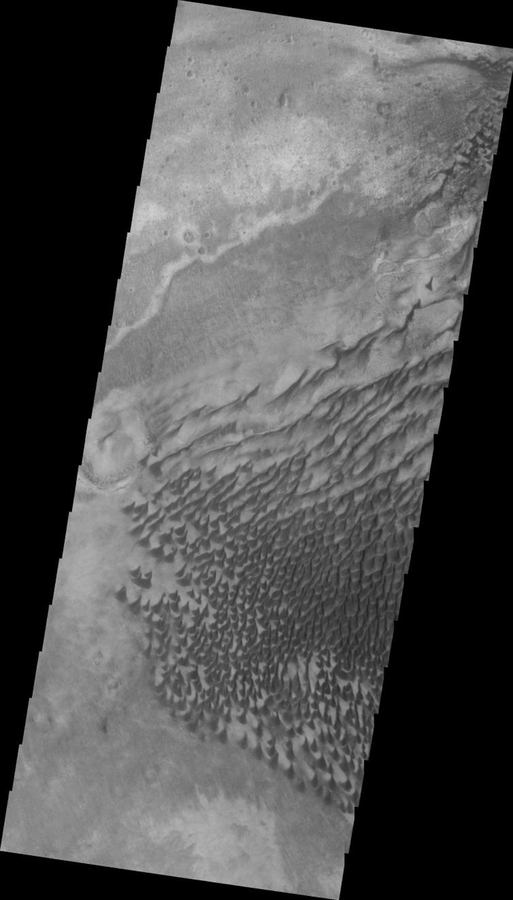 This 2001 Mars Odyssey image shows a portion of the extensive dune field in on the floor of Russell Crater on Mars.