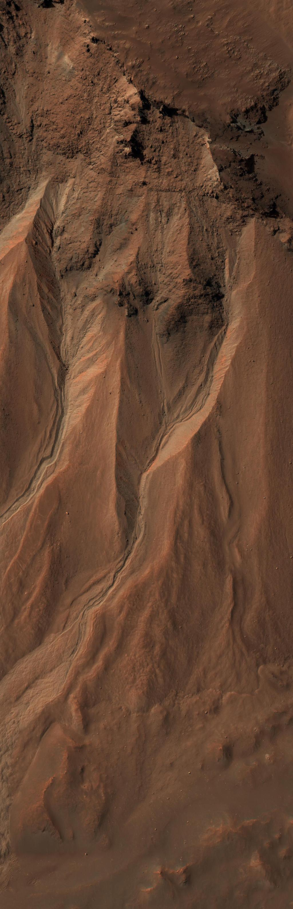 This image from the High Resolution Imaging Science Experiment camera on NASA's Mars Reconnaissance Orbiter shows gullies near the edge of Hale crater on southern Mars.