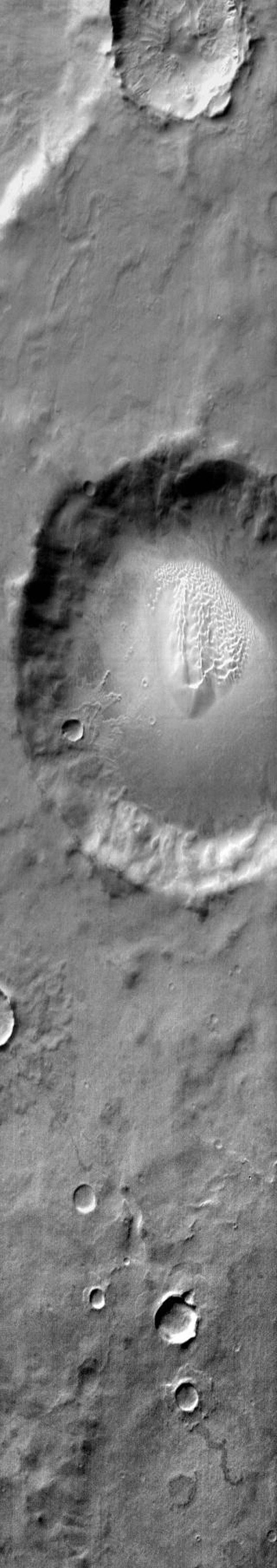 This image from NASA's Mars Odyssey shows a sand sheet with dune forms on the floor of an unnamed crater southeast of Proctor Crater on Mars.