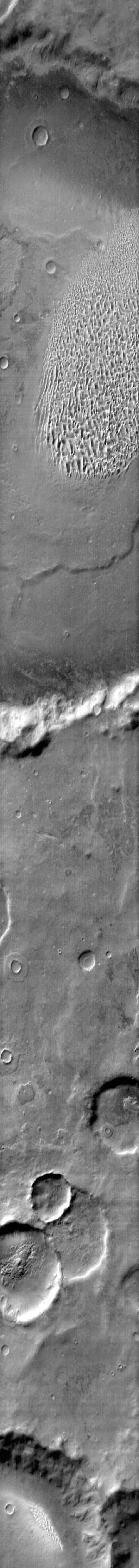 This image from NASA's Mars Odyssey shows a sand sheet with dune forms located on the floor of Proctor Crater on Mars.