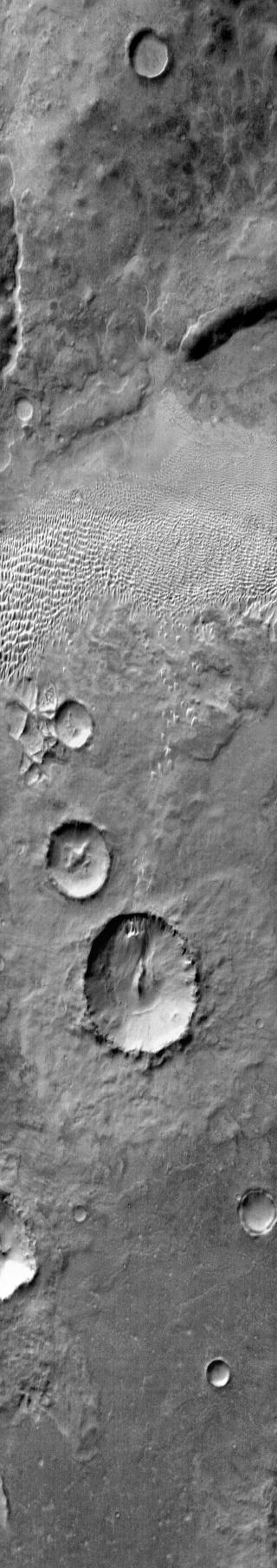 NASA's 2001 Mars Odyssey infrared image shows a group of dunes in Aonia Terra.