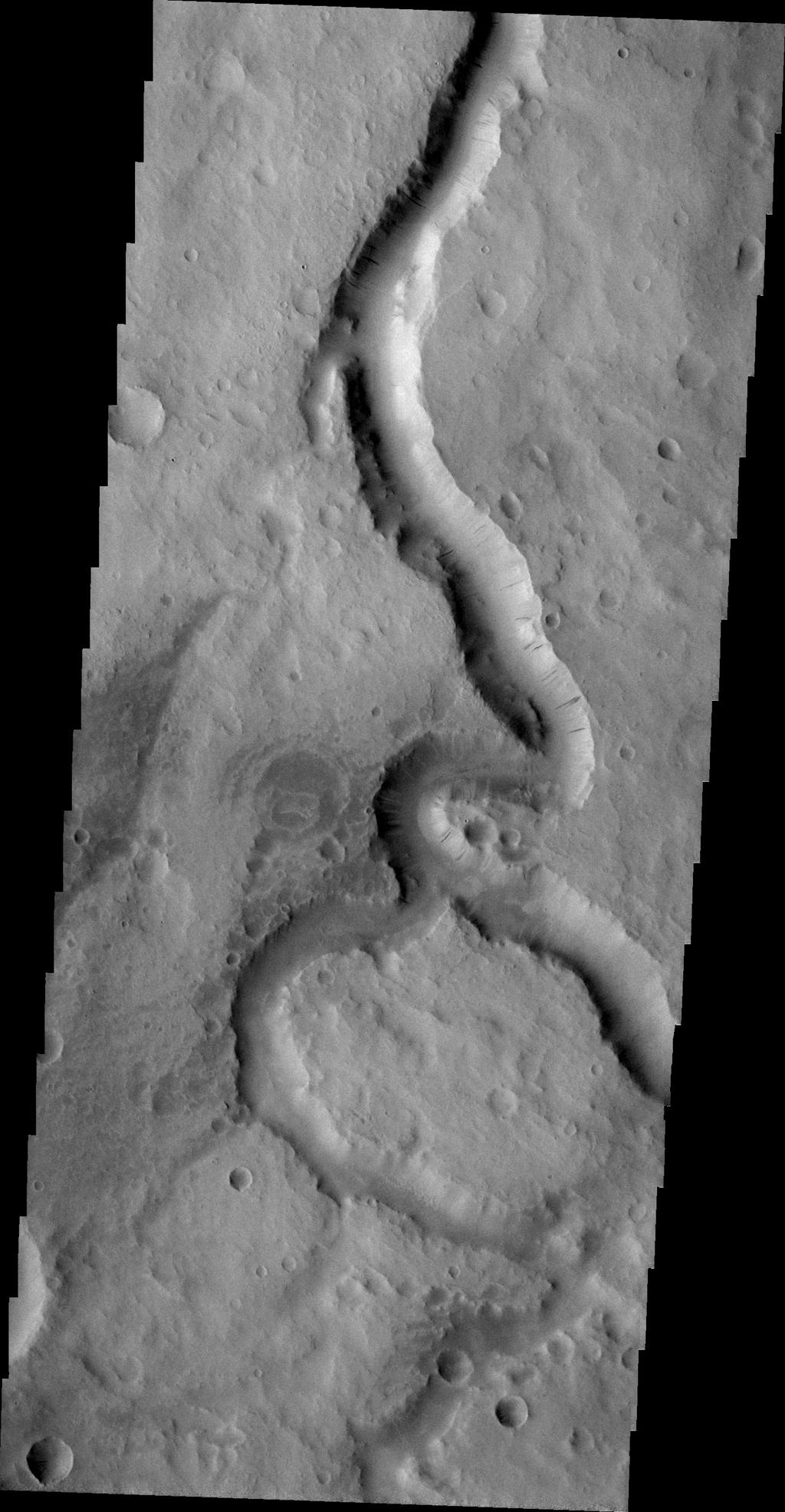 This image taken by NASA's 2001 Mars Odyssey spacecraft shows a portion of Scamander Vallis. Dark slope streaks are also visible on the west-facing wall of the channel.