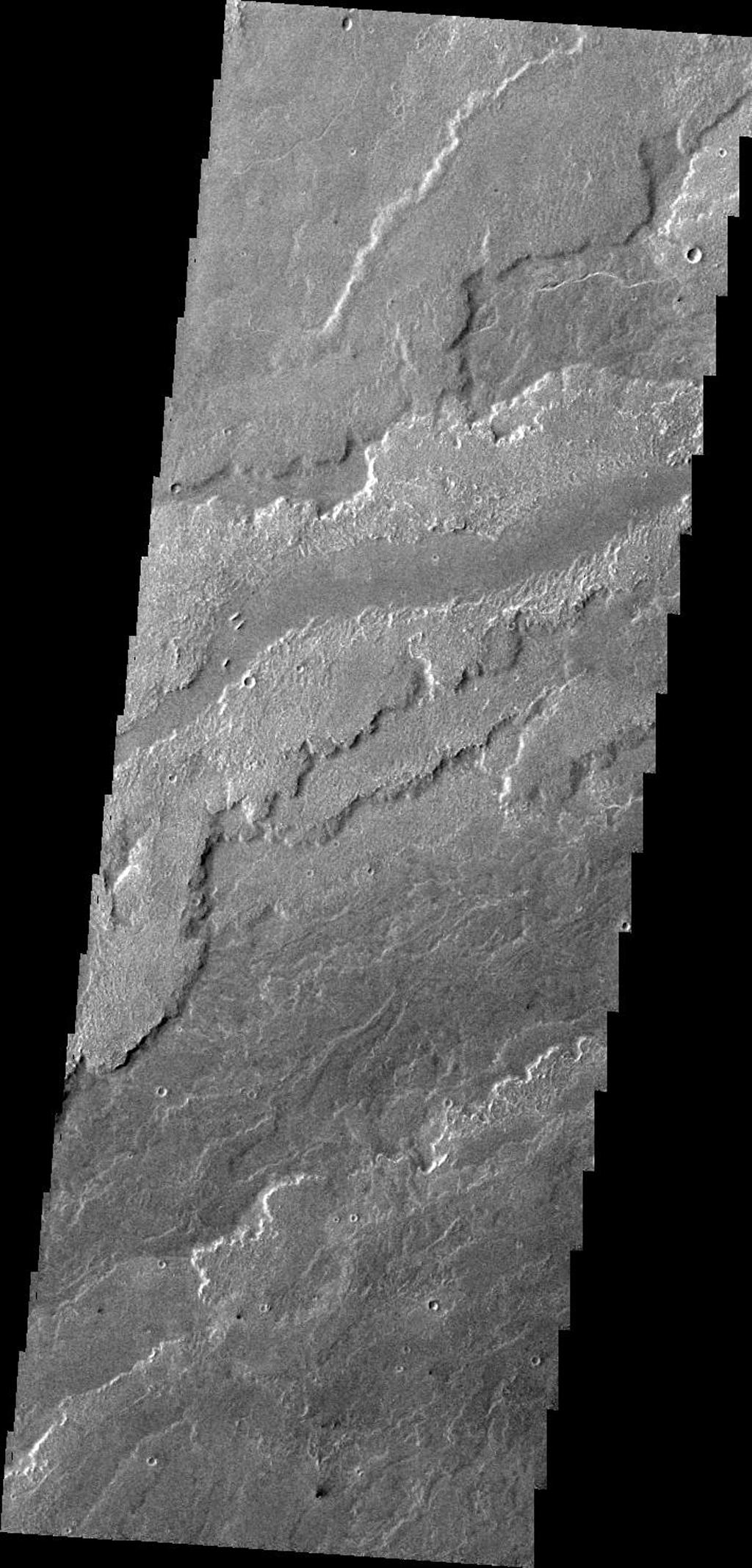 This image, taken by NASA's 2001 Mars Odyssey spacecraft, shows a small portion of the lava flows associated with Arsia Mons.
