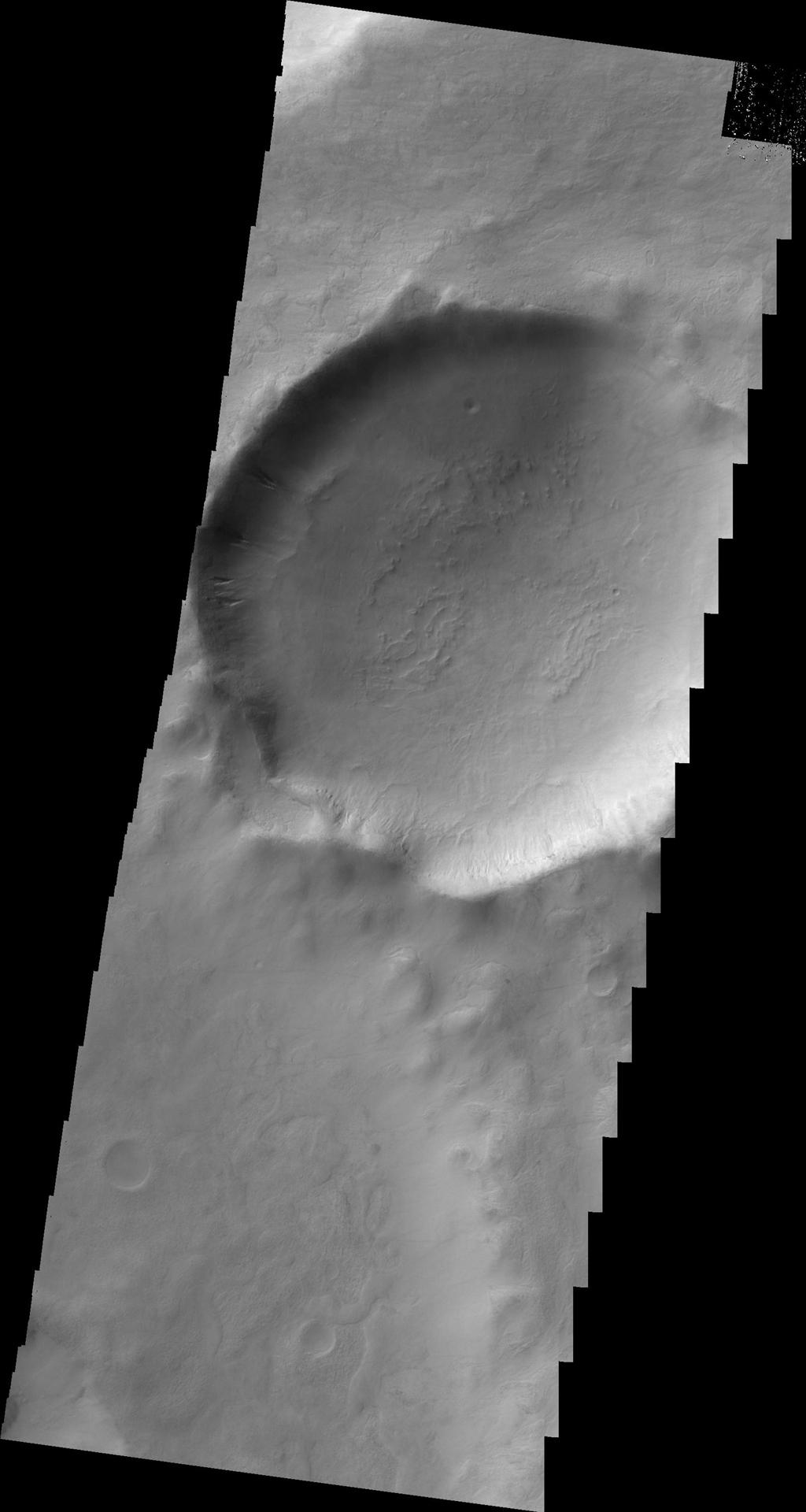 Several gullies located on the rim of this unnamed crater in Terra Sirenum are seen in this image taken by NASA's 2001 Mars Odyssey spacecraft.