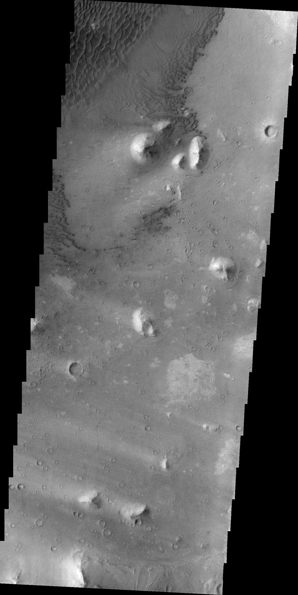 This image, taken by NASA's 2001 Mars Odyssey spacecraft, shows part of the floor of Ganges Chasma. Sand dunes and windstreaks indicate long term wind action in the area.