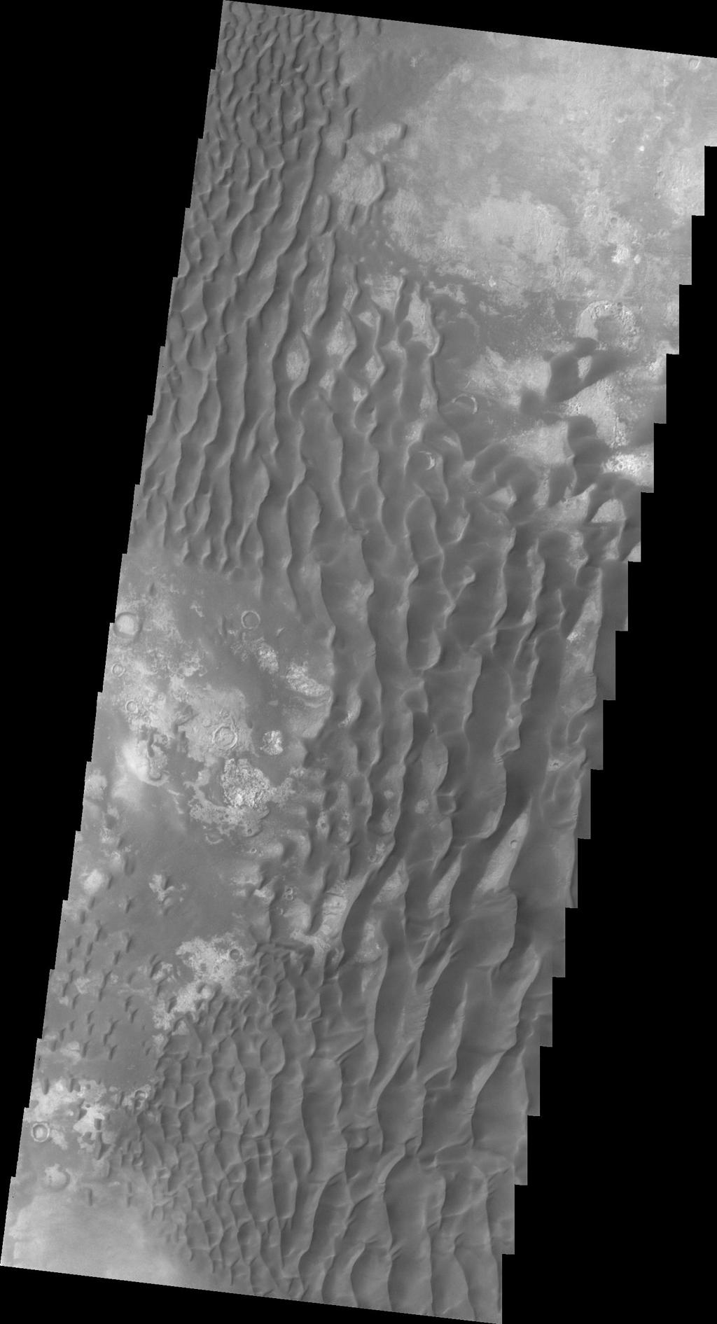 This daytime infrared image of Kaiser Crater, taken by NASA's 2001 Mars Odyssey spacecraft, shows the majority of the dune field located on the floor of the crater.