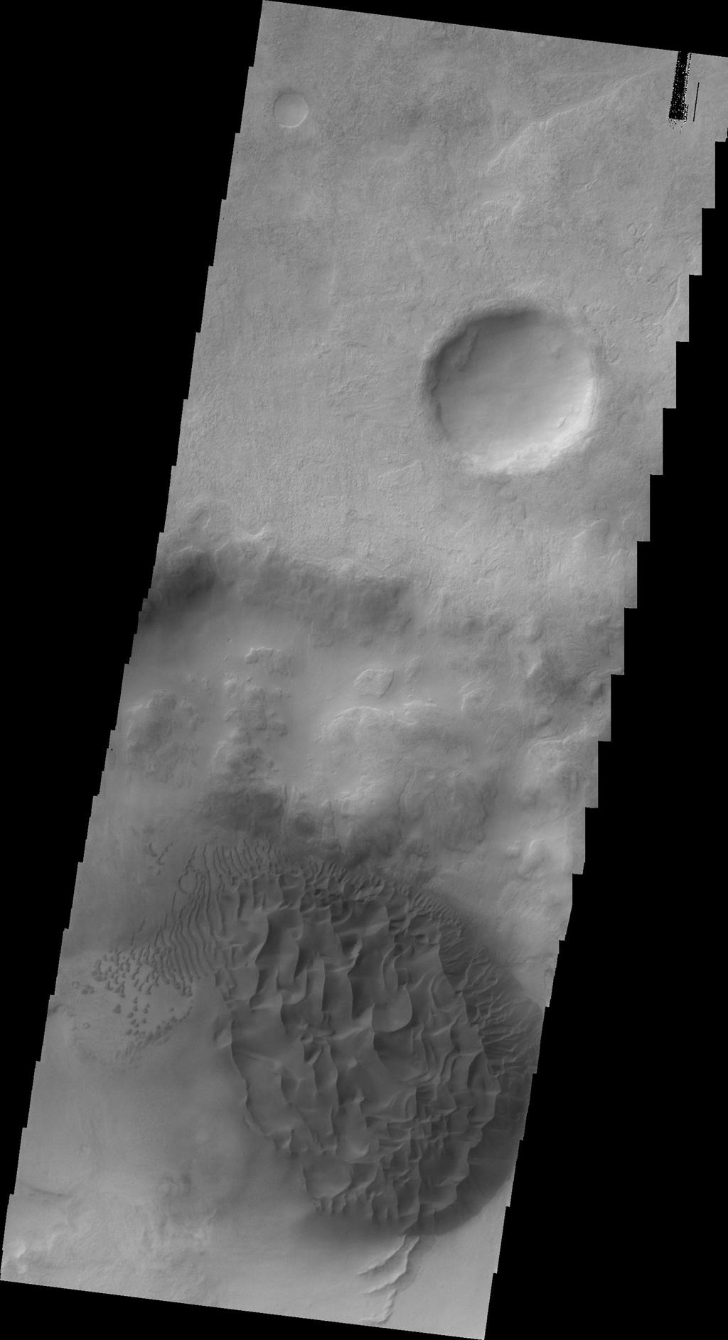 The dune field in this image taken by NASA's 2001 Mars Odyssey is located on the floor of an unnamed crater east of Proctor Crater.
