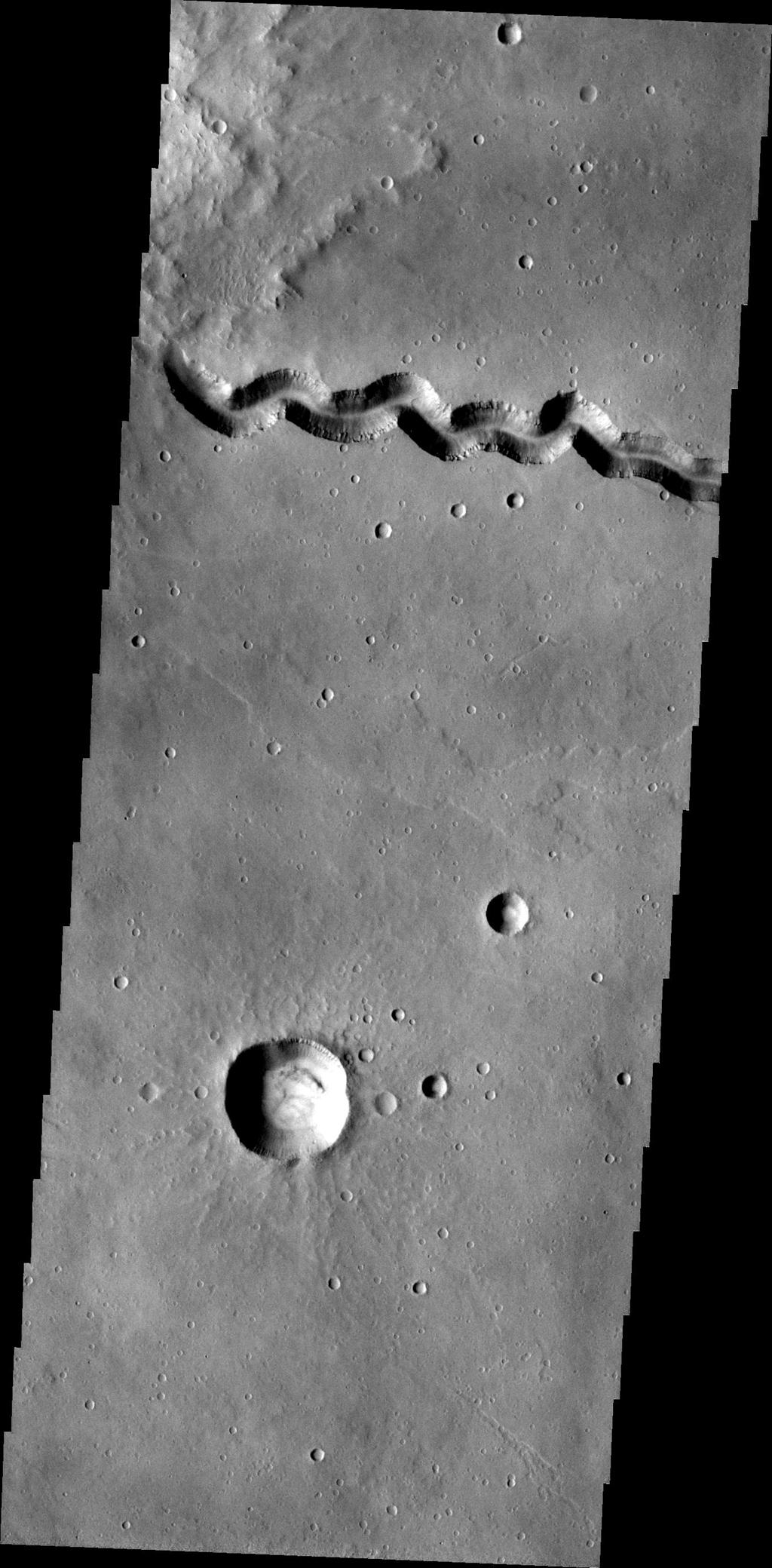 This image, taken by NASA's 2001 Mars Odyssey spacecraft, shows a portion of Patapsco Vallis, a channel located on the eastern margin of Elysium Mons.