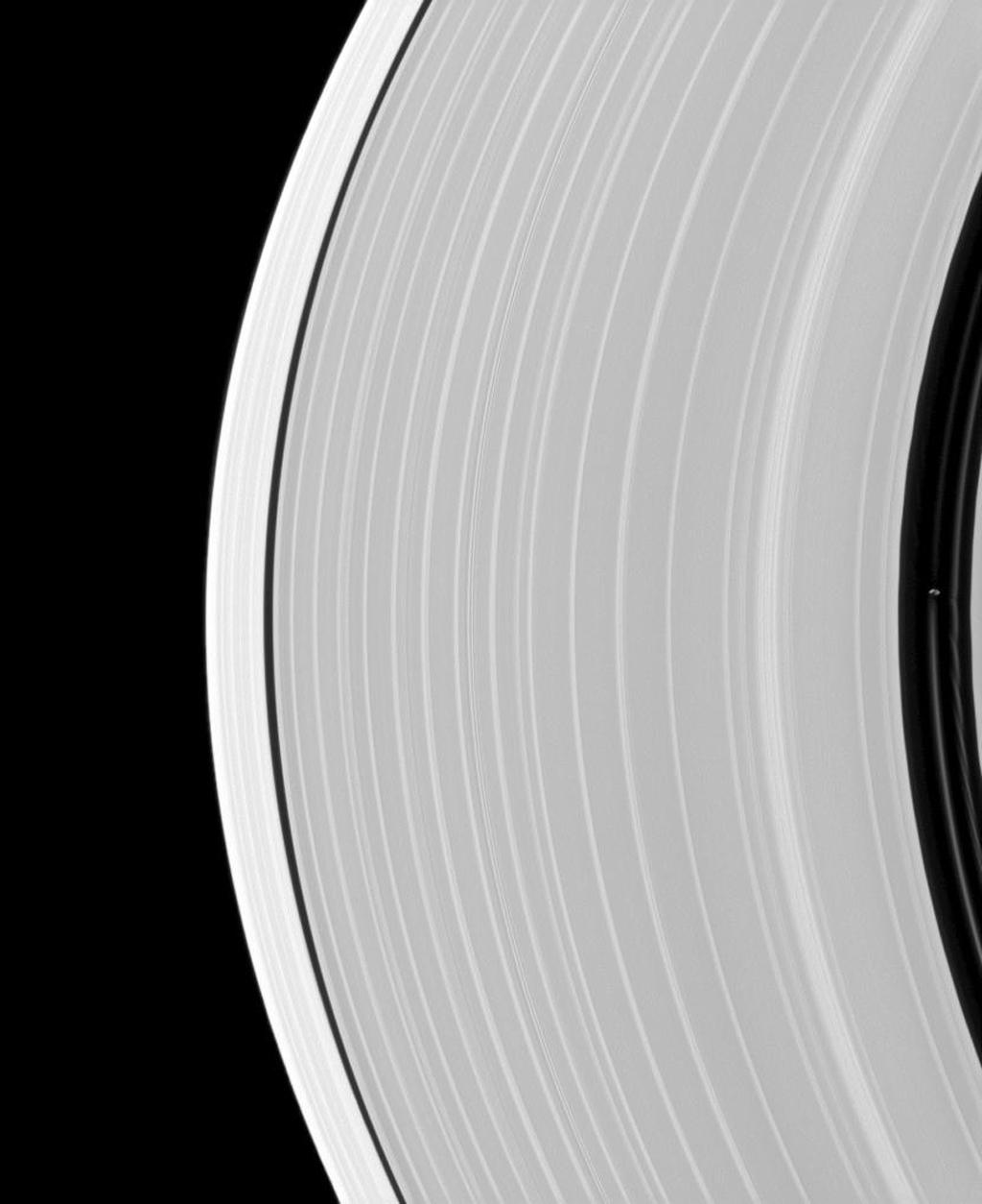 Saturn's small, ring-embedded moon Pan, on the extreme right of this NASA's Cassini spacecraft image, can be seen interacting with the ringlets that share the Encke Gap of the A ring with this moon.
