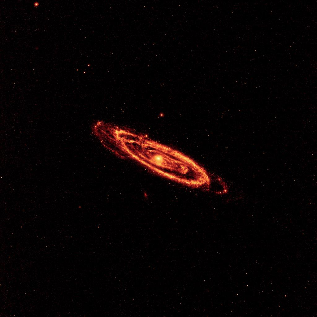 This image from NASA's Wide-field Infrared Survey Explorer highlights the dust that speckles the Andromeda galaxy's spiral arms. The hot dust, which is being heated by newborn stars, traces the spidery arms all the way to the center of the galaxy.