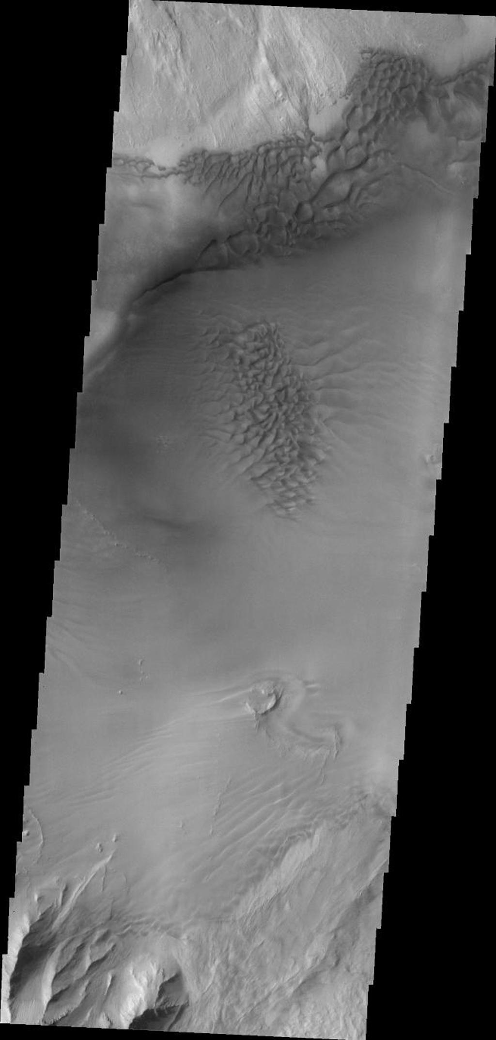 The sand sheet and dunes in this image, taken by NASA's 2001 Mars Odyssey spacecraft, are located on the floor of Juventae Chasma.