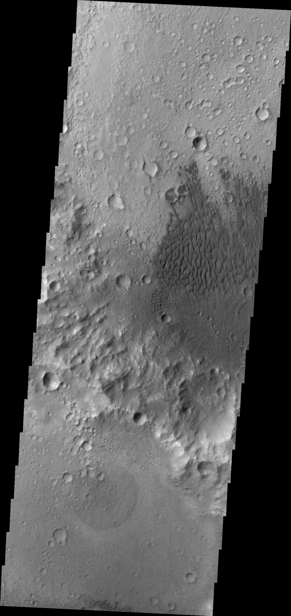 The dunes in this image are located on the floor of an unnamed crater in Tyrrhena Terra as seen by NASA's 2001 Mars Odyssey spacecraft.