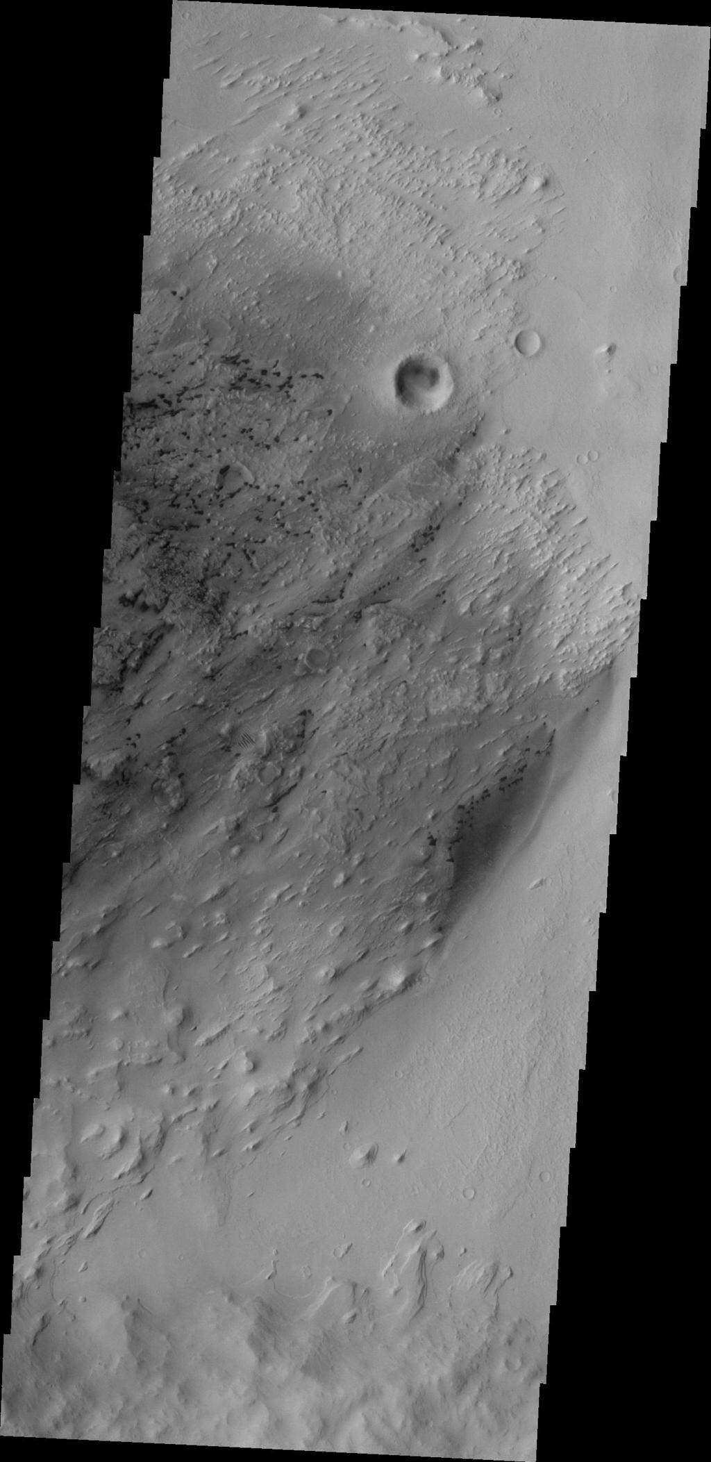 The small, dark features are sand dunes in this image by NASA's 2001 Mars Odyssey spacecraft. The majority of the dunes appear to be located within eroded deposits on the floor of Pastuer Crater.