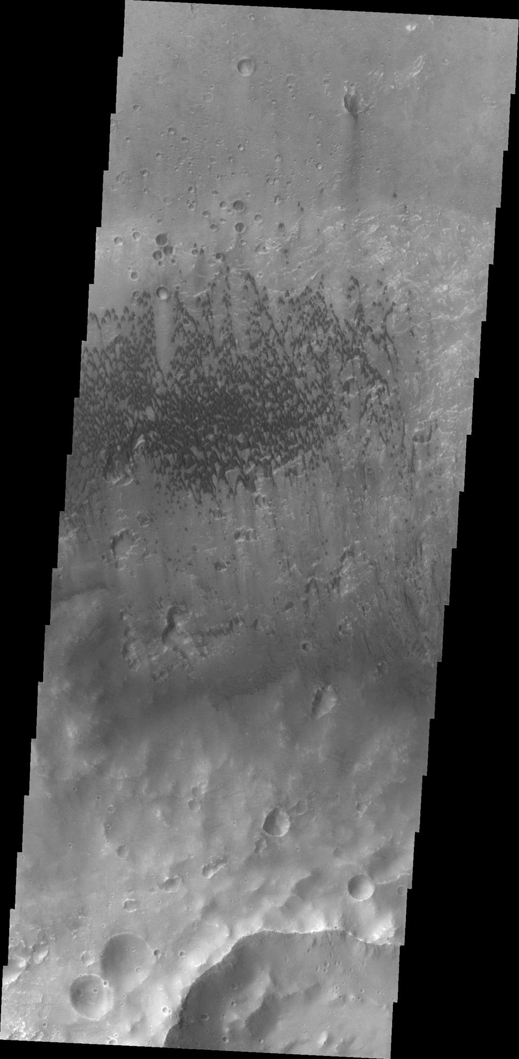 Sand dunes located on the floor of McLaughlin Crater as seen by NASA's 2001 Mars Odyssey spacecraft.