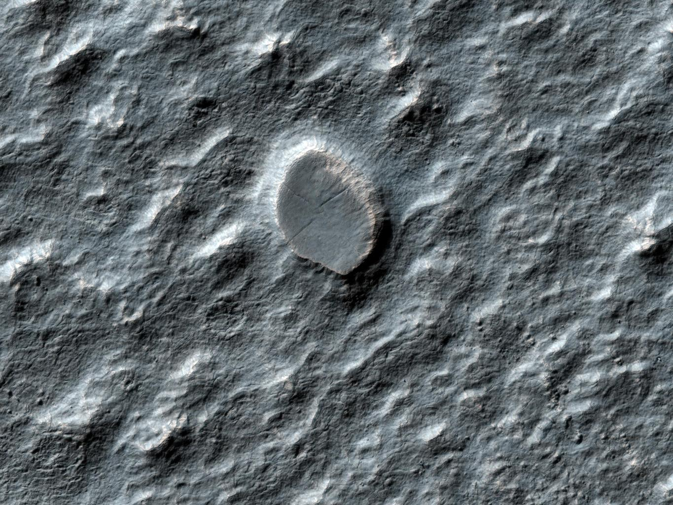 This image from NASA's Mars Reconnaissance Orbiter shows a swath of a debris apron east of Hellas Basin. Features like this are often found surrounding isolated mountains in this area. Original release date March 3, 2010.