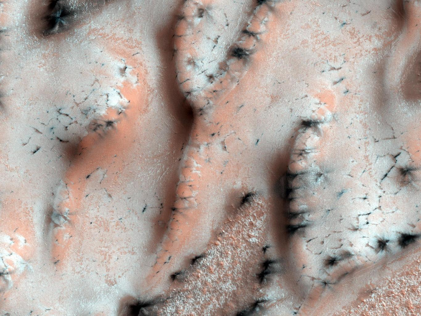 In the winter a layer of carbon dioxide ice (dry ice) covers the north polar sand dunes as shown by NASA's Mars Reconnaissance Orbiter. In the spring the sublimation of the ice (going directly from ice to gas) causes a host of uniquely Martian phenomena.