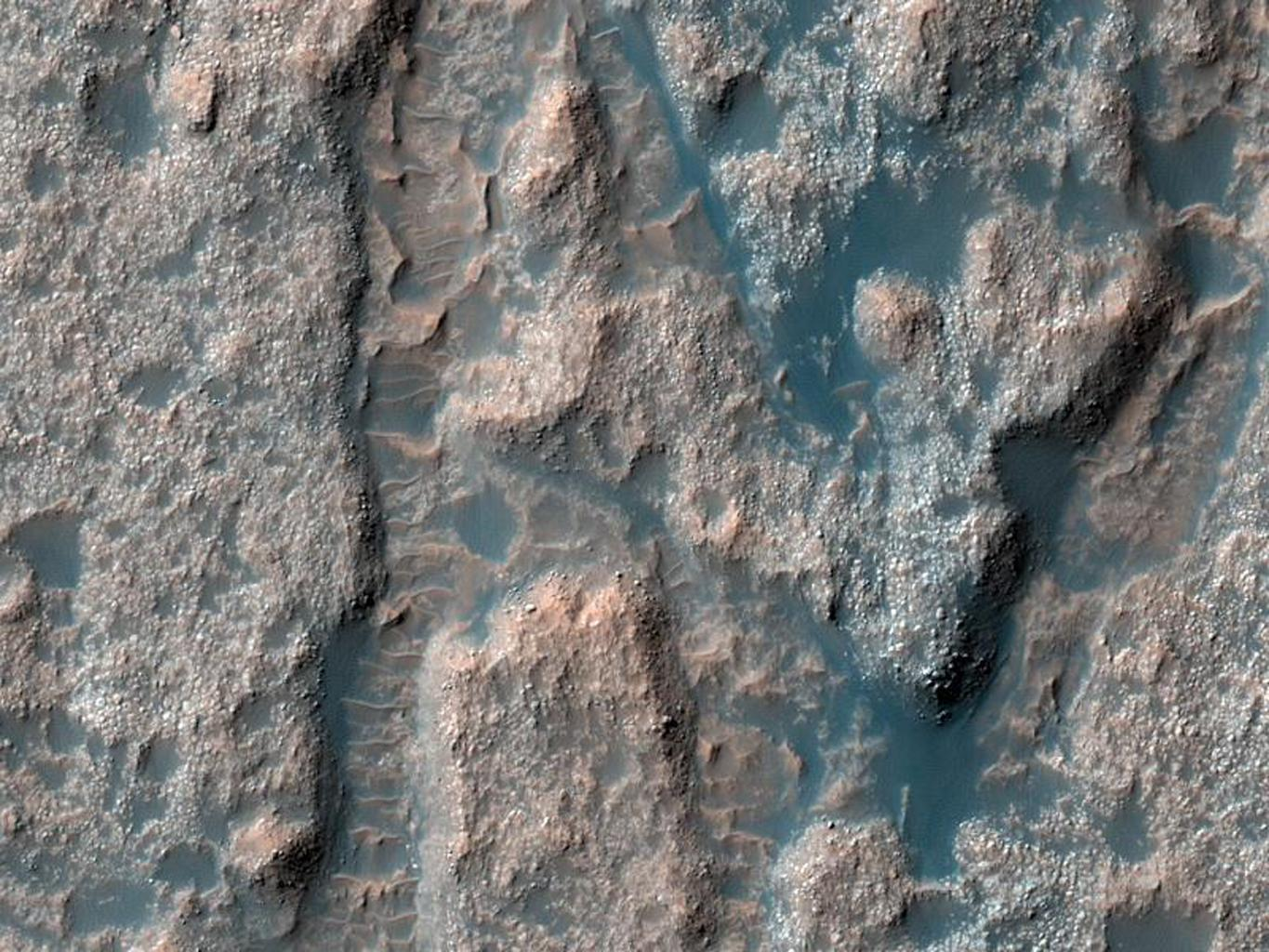 This image from NASA's Mars Reconnaissance Orbiter shows a portion of the floor in Palos Crater on equatorial Mars. The floor appears bumpy with high-standing layered knobs; most of its terrain is weathering into meter-size (yard-size) polygonal blocks.