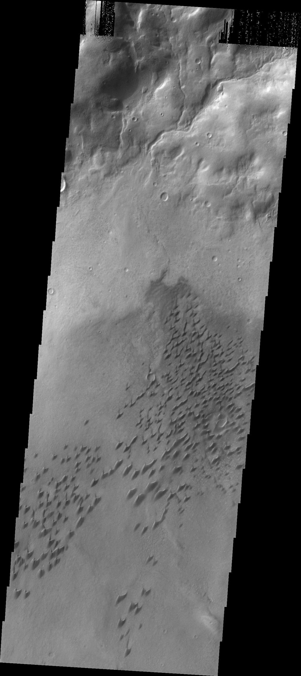 This image captured by NASA's 2001 Mars Odyssey spacecraft shows part of the dune field located on the floor of Arkhangelsky Crater.