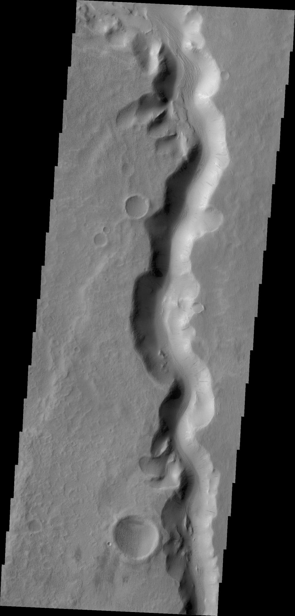 This image from NASA's 2001 Mars Odyssey shows a section of Sabis Vallis.