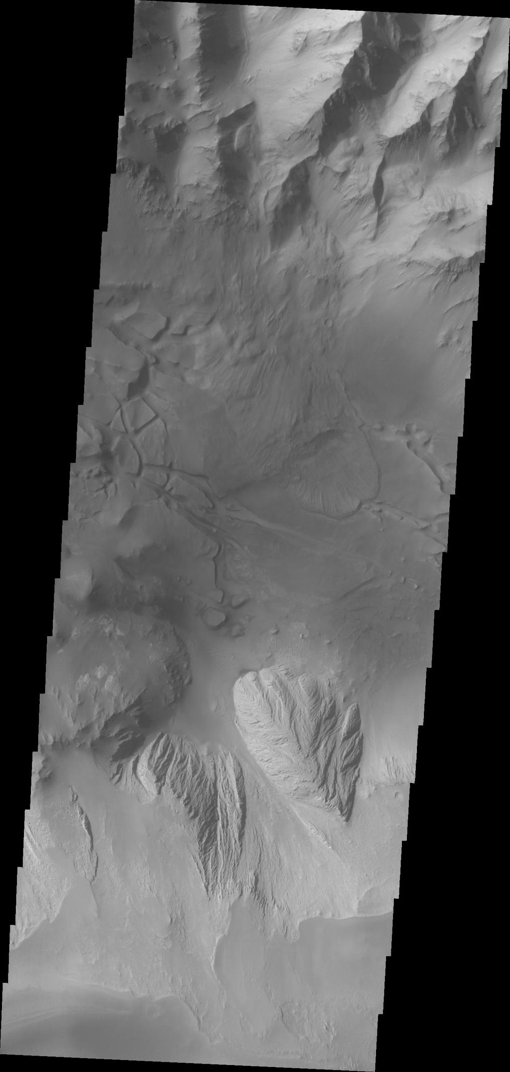This image of Candor Chasma taken by NASA's 2001 Mars Odyssey contains eroded deposits of material and a large landslide deposit. Gravity, wind, and water all played a role in shaping the landforms we see in this image.