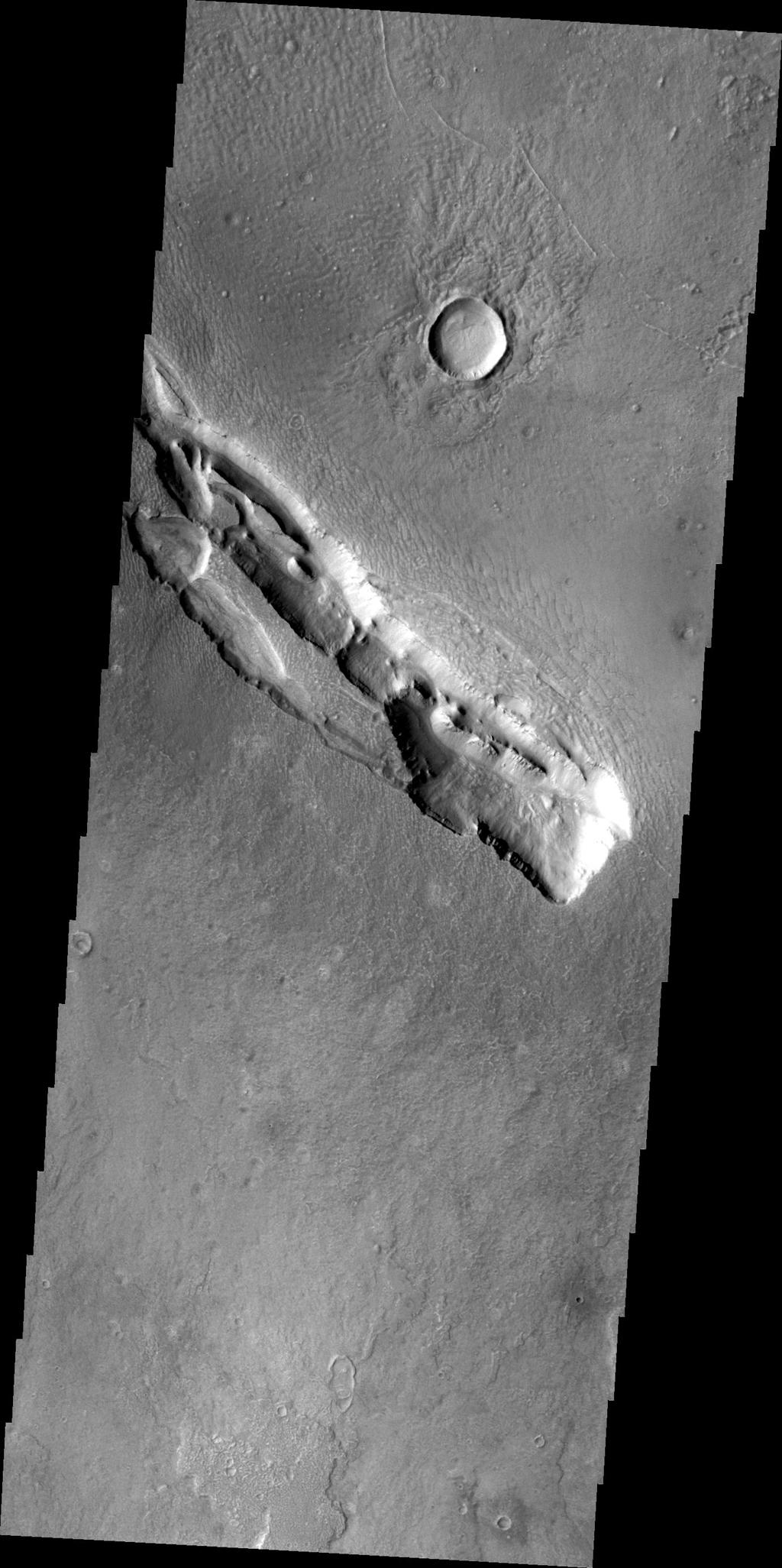 The fracture system in this image, captured by NASA's 2001 Mars Odyssey, is part of Galaxias Fossae, a series of fractures on the northern part of the Elysium Mons volcanic complex.