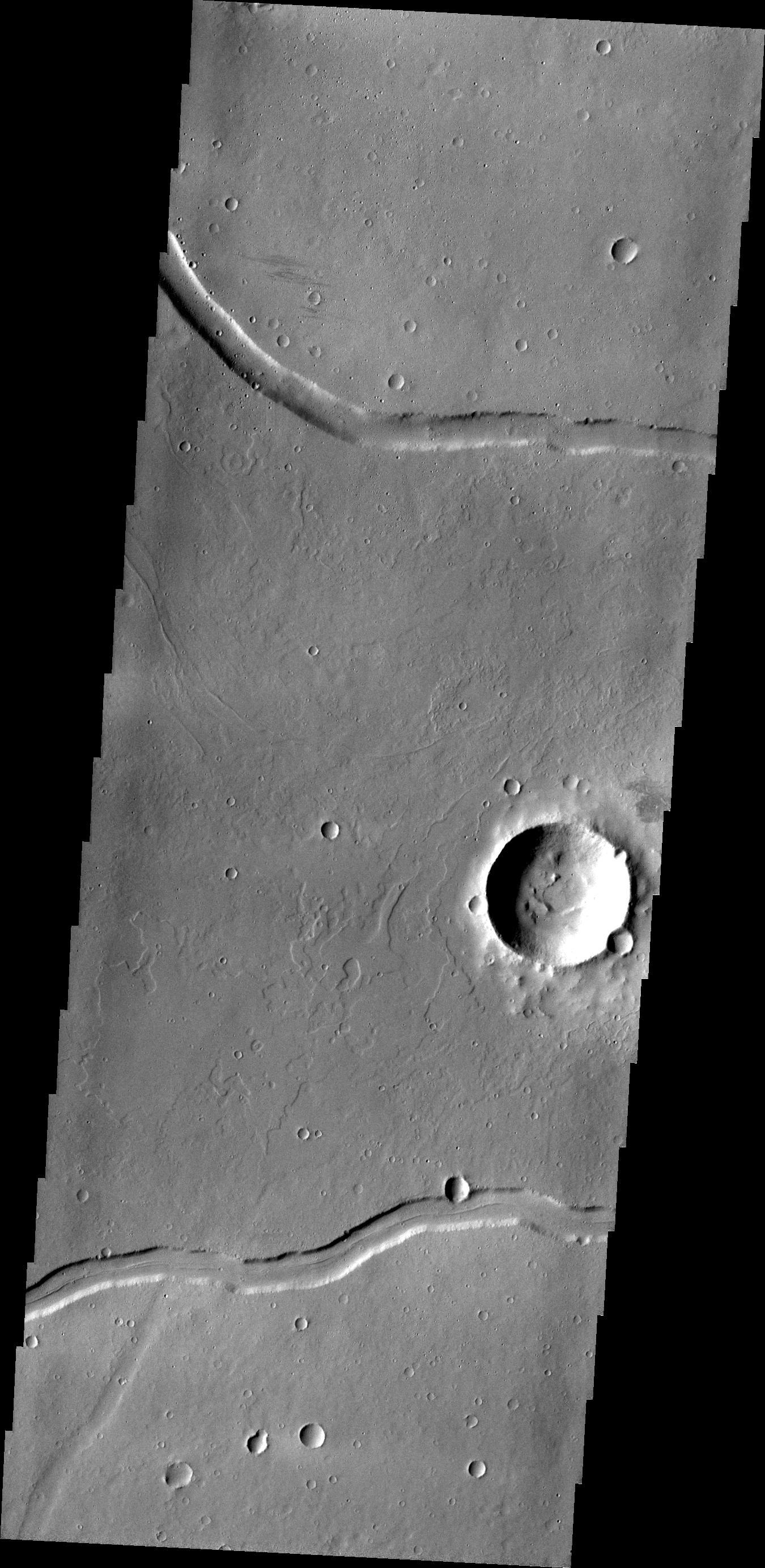 This image from NASA's 2001 Mars Odyssey shows a portion of Rhabon Vallis, a channel south of Uranius Mons.