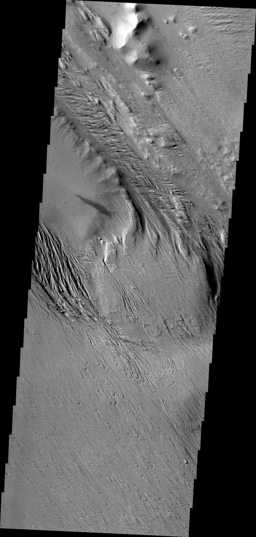 NASA's 2001 Mars Odyssey captured this region of Mars which has been eroded by the wind. Linear hills called yardangs indicate the wind direction, which varies in this area of Medusae Fossae.