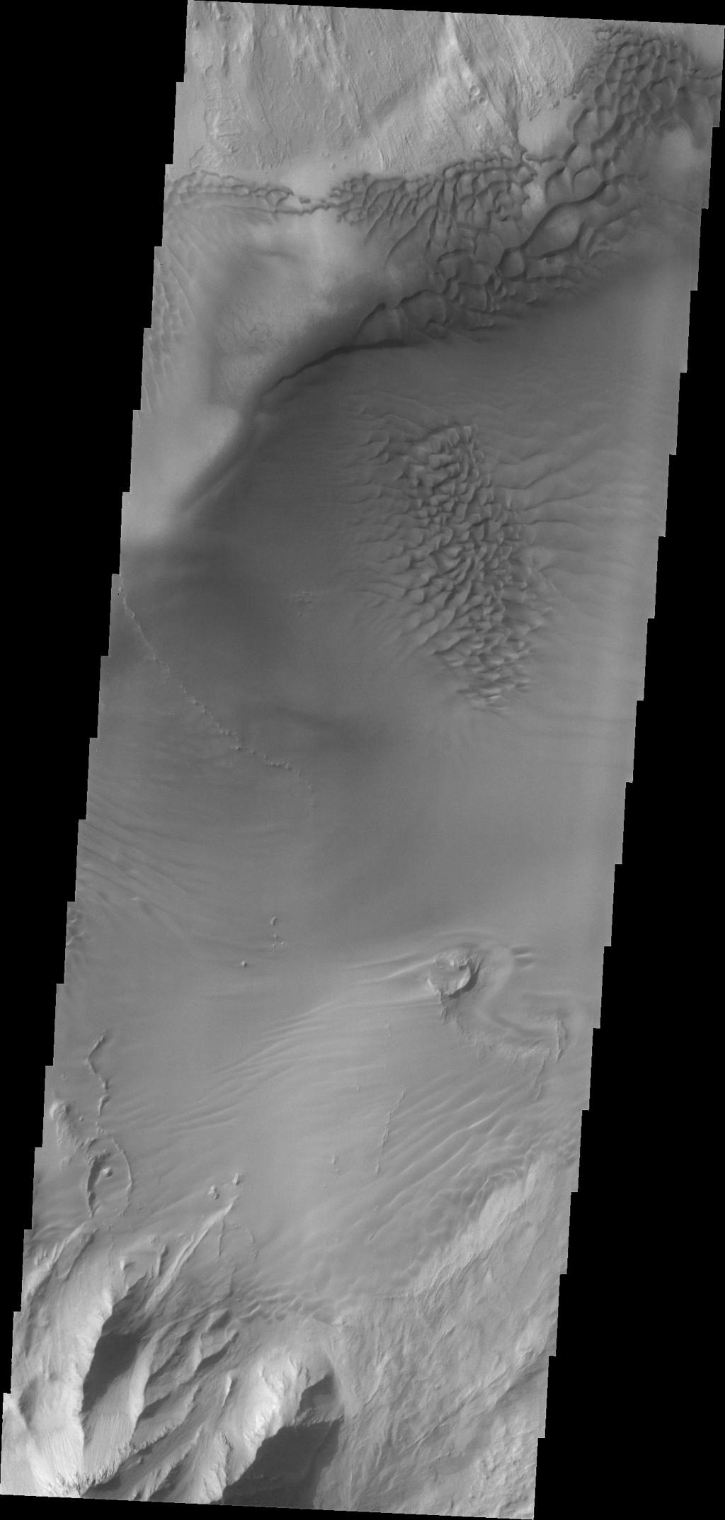 This image captured by NASA's 2001 Mars Odyssey shows dunes on the floor of Juventae Chasma.